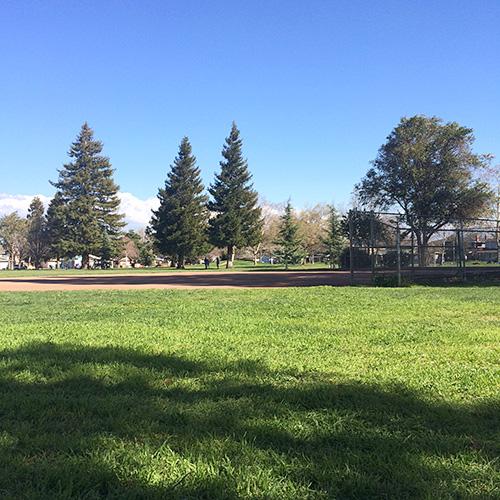 Doerr Park in San Jose