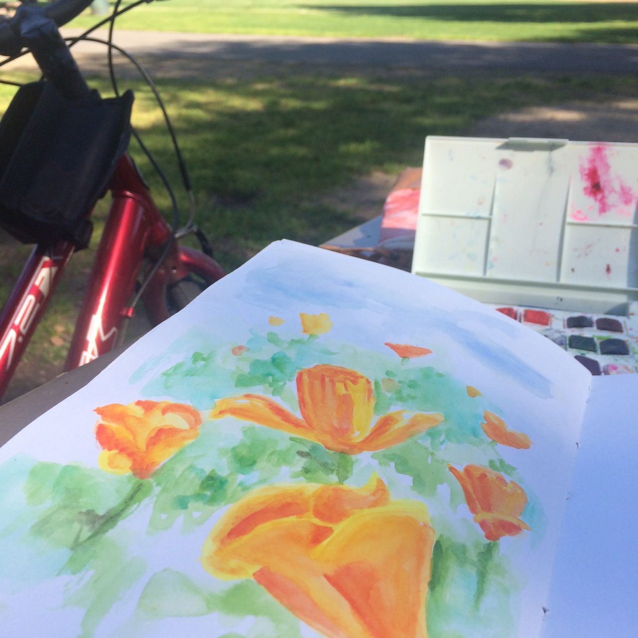 In-progress shot of day 64 at a park here in San Jose. I remember being so excited on this ride out and about that I was finally seeing poppies spring up everywhere! They are such happy flowers.