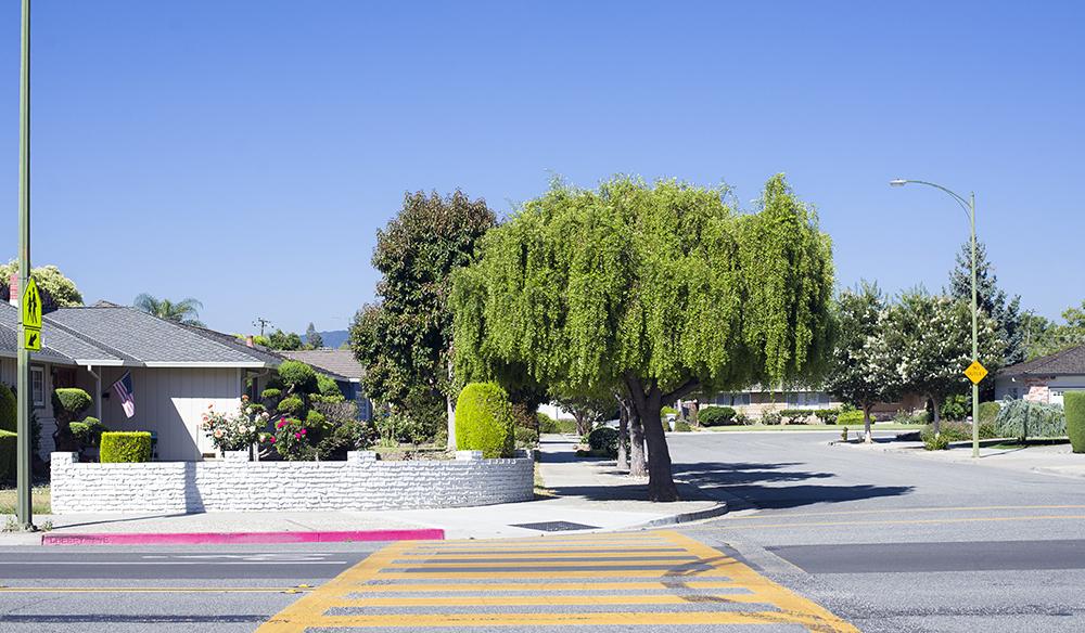 Cherry Ave. San Jose, CA.