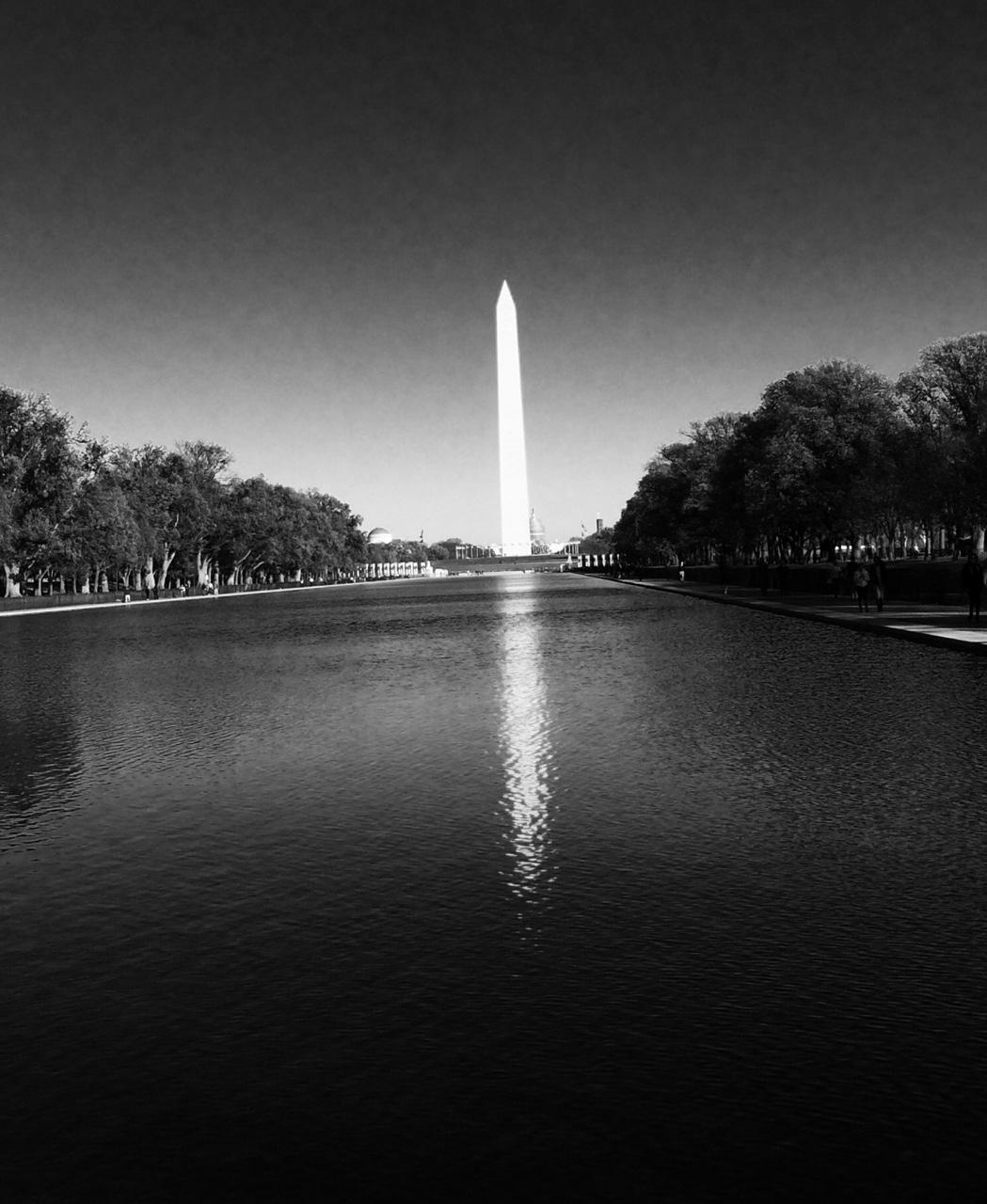 in on the kill taker   Washington D.C. - Fall 2014