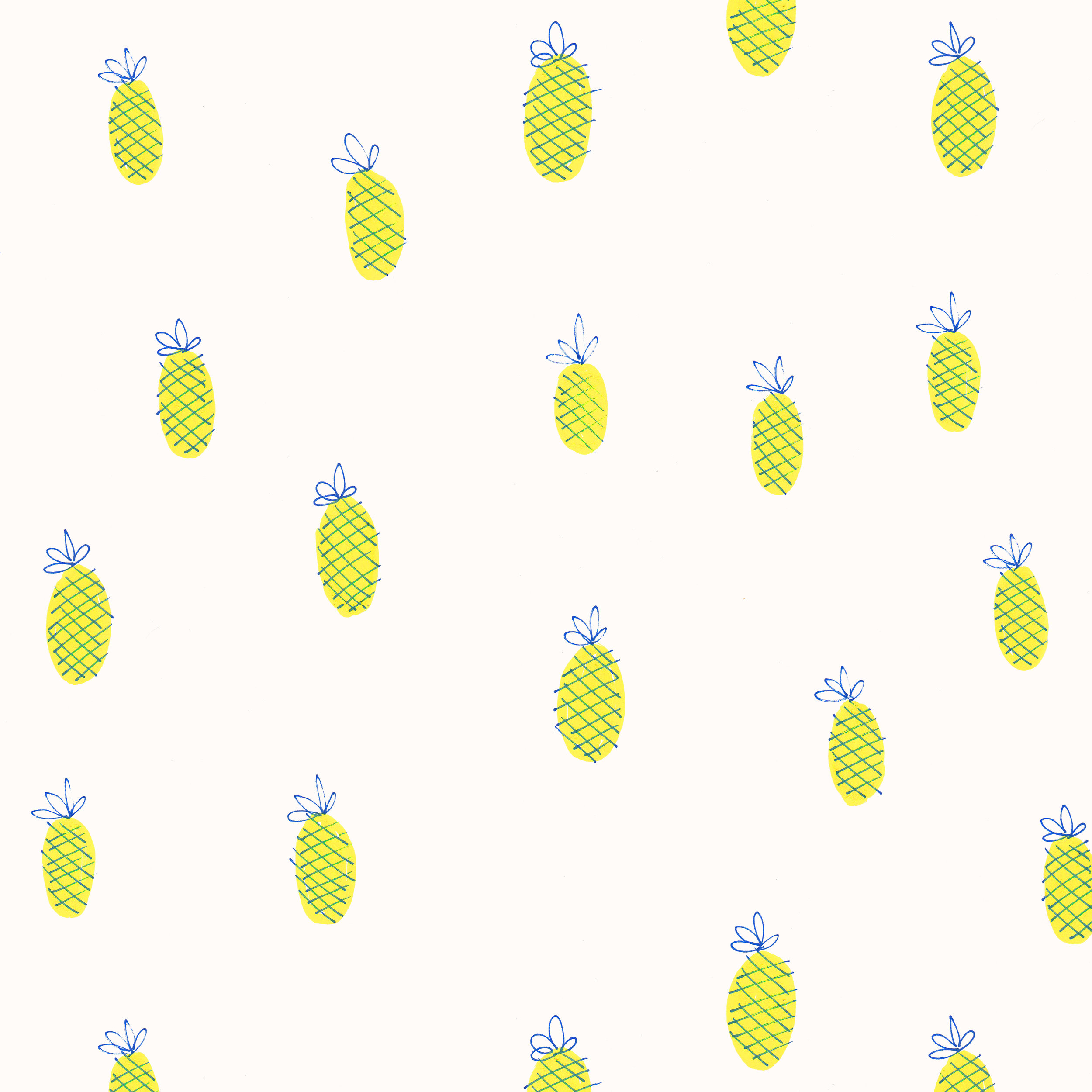 pineapple doodles.jpg