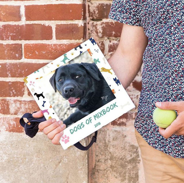 dog book 2.png