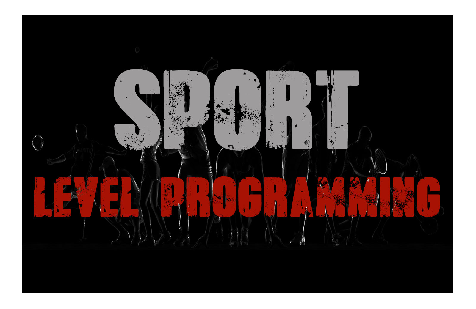 sports-level-programming-cover-landing-page.jpg