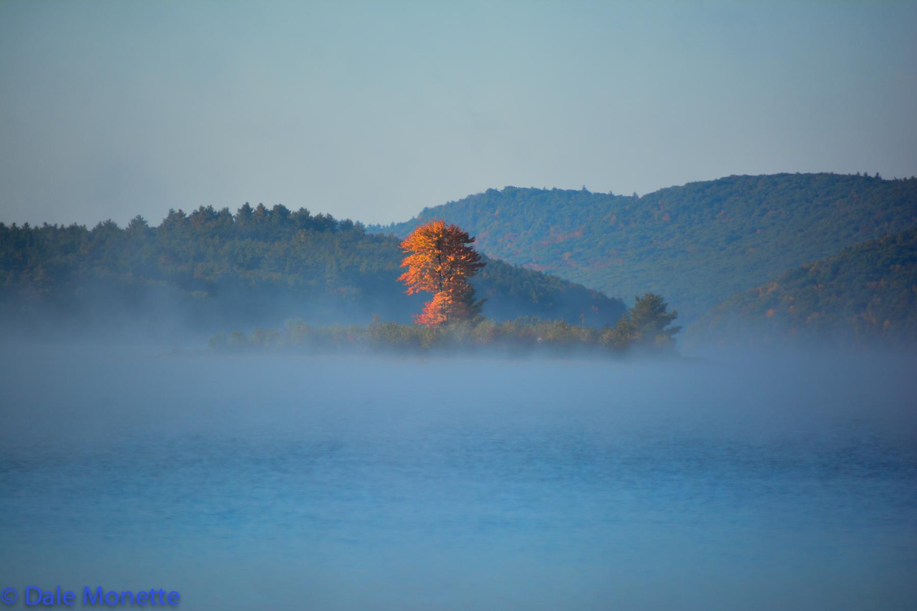 Lone tree island….