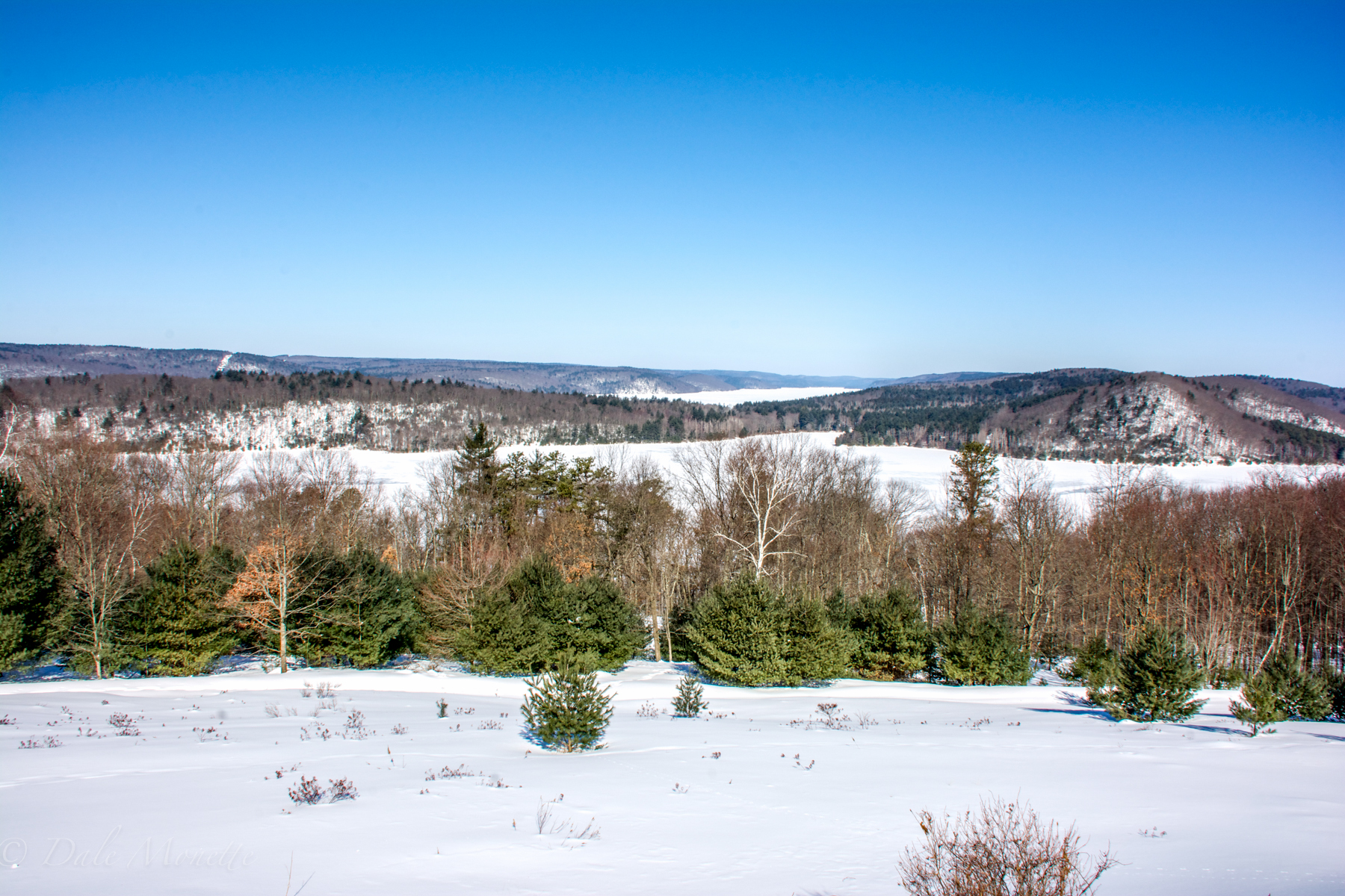Looking up the west branch of Quabbin from the Enfield Lookout.