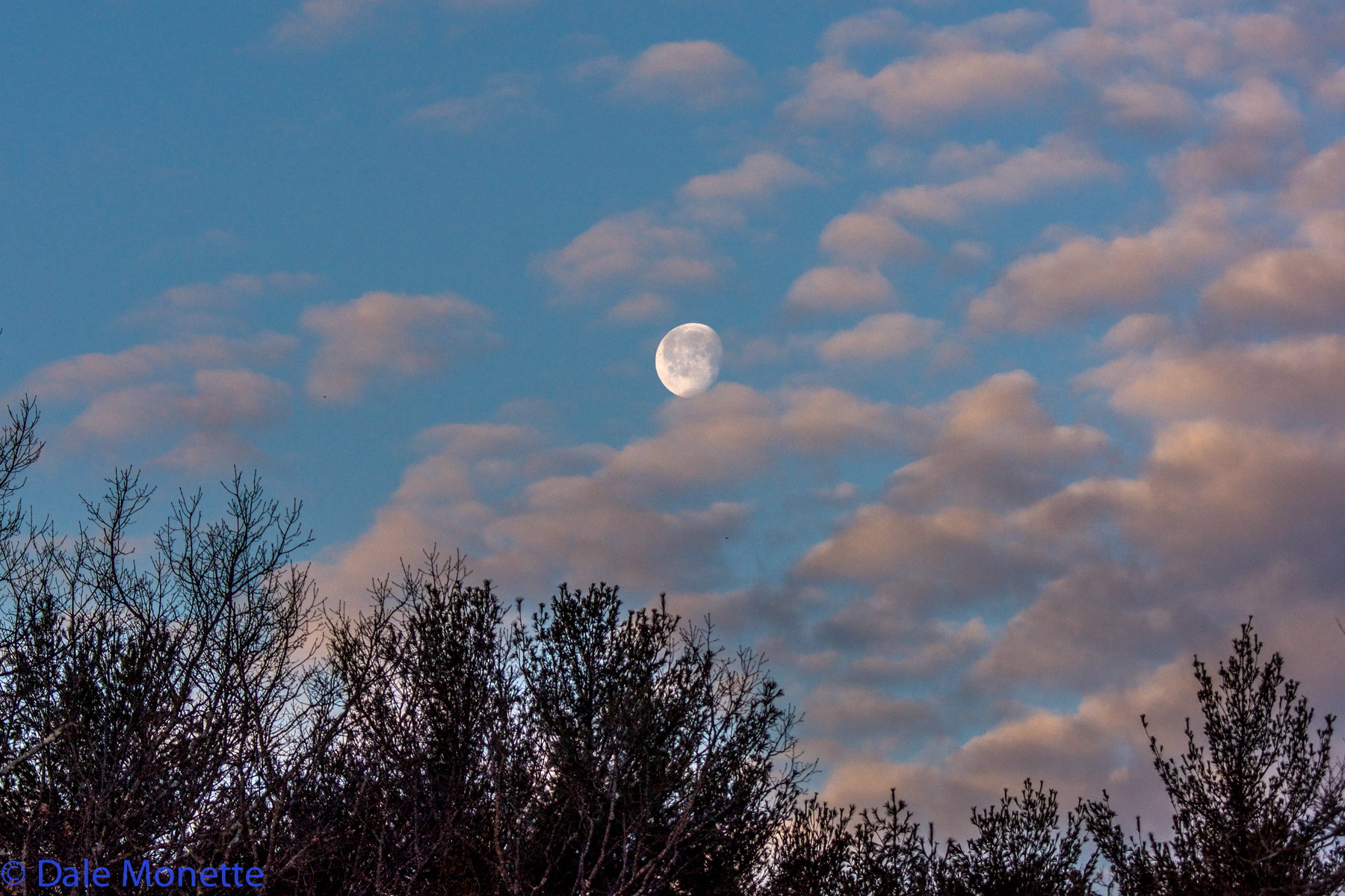 Early spring moon over Moore Island