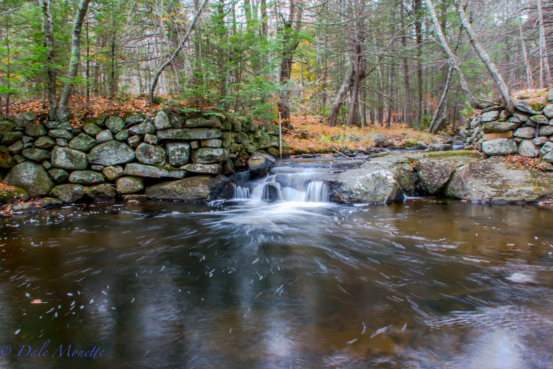 Hop Brook, gate 22 Quabbin Reservoir  7AM  11/1/15
