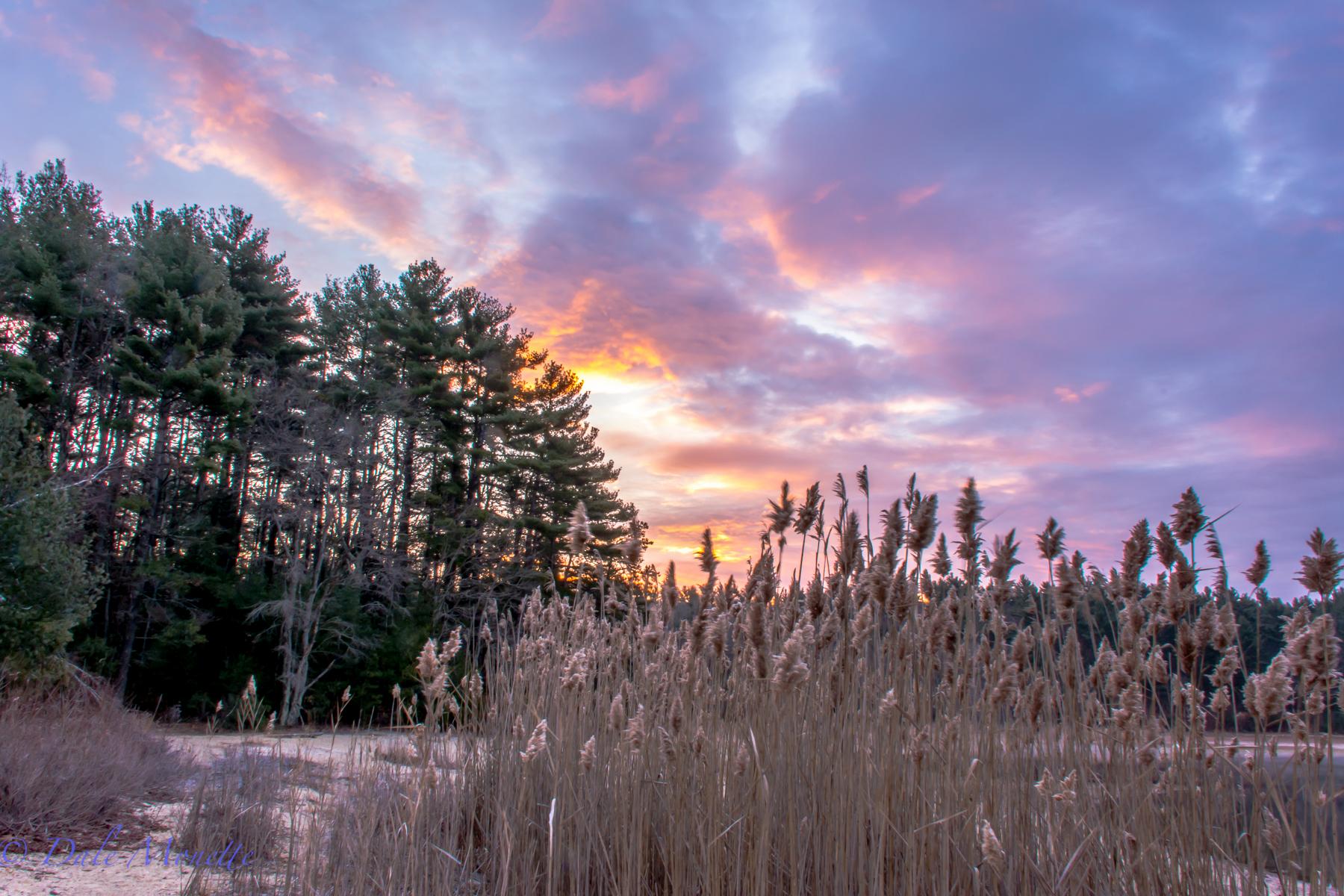 Sunrise,  December 7th, Northern Quabbin......