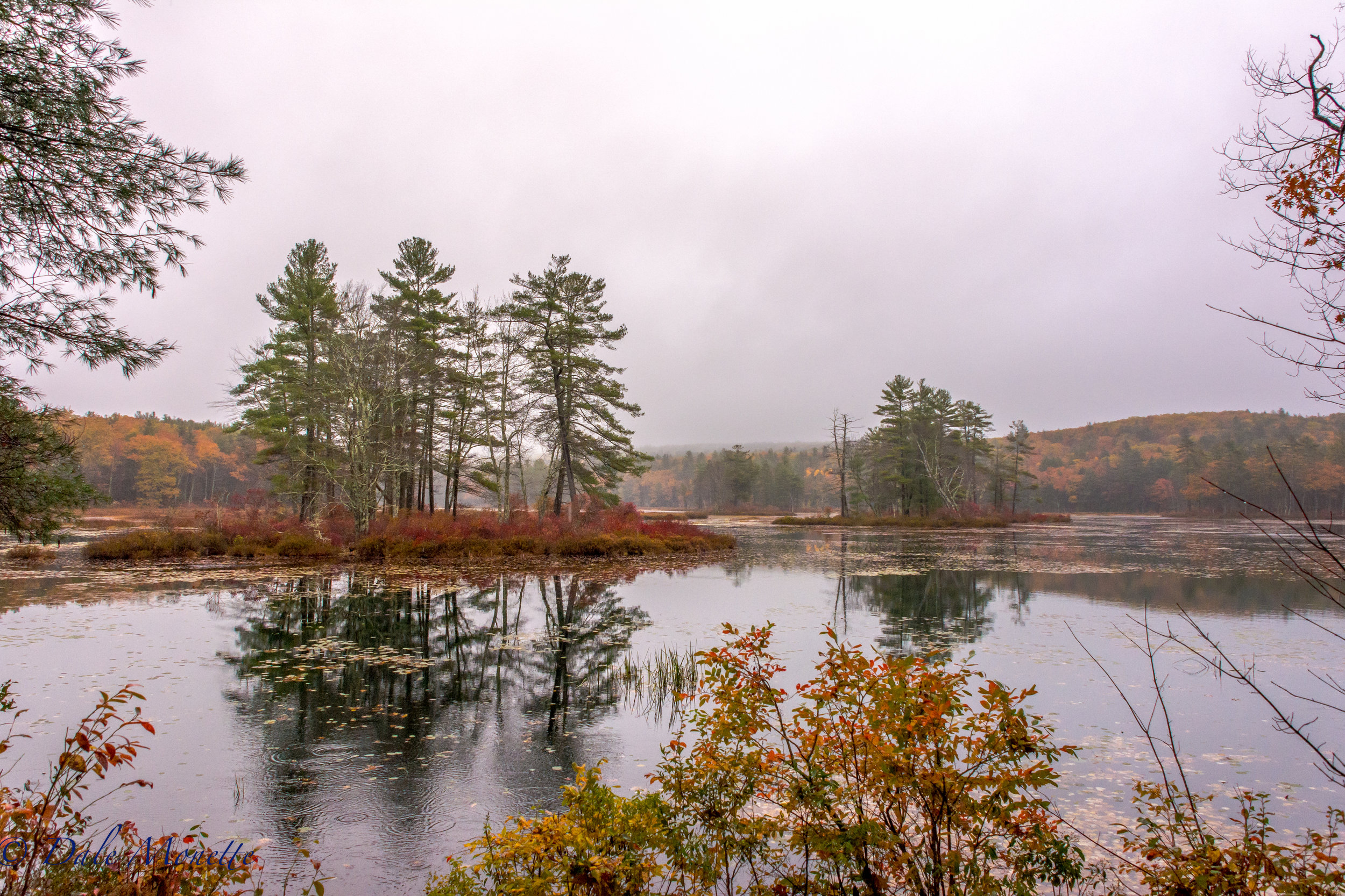 There was a light mist to everything this morning. Sometimes I find this better for scenics than direct sunlight. I love the softness that foggy, misty days can bring to photographs. Harvard Pond, Petersham, MA. 10/22/16