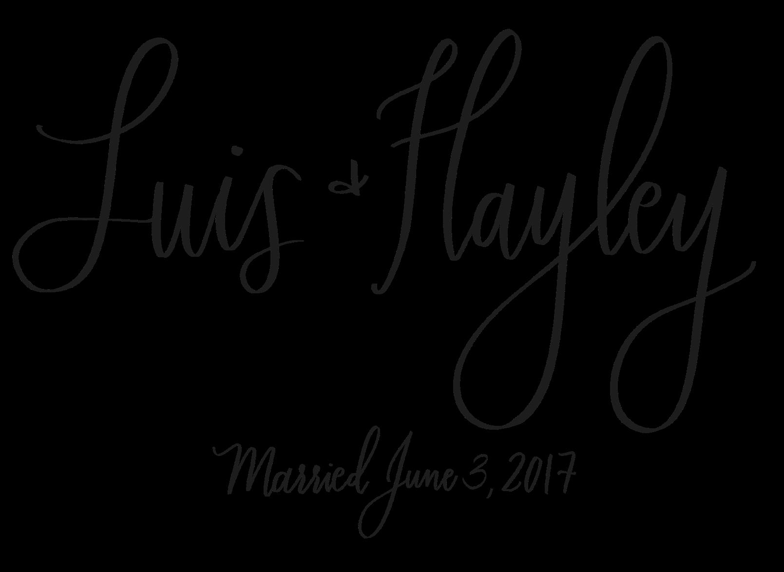 Luis + Hayley Married copy.PNG