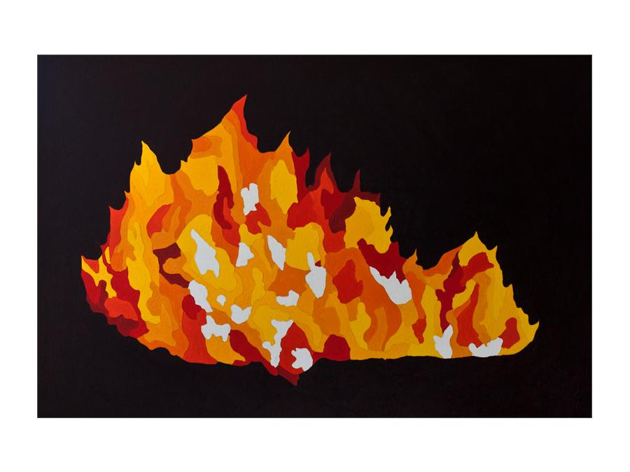 fuego9.jpg