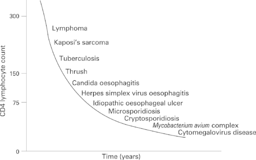 Natural history of untreated HIV infection and relationship of specific opportunistic infections to CD4 count. Image from  BMJ Gut 2008; 57: 861-870.
