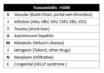 transaminitis.PNG