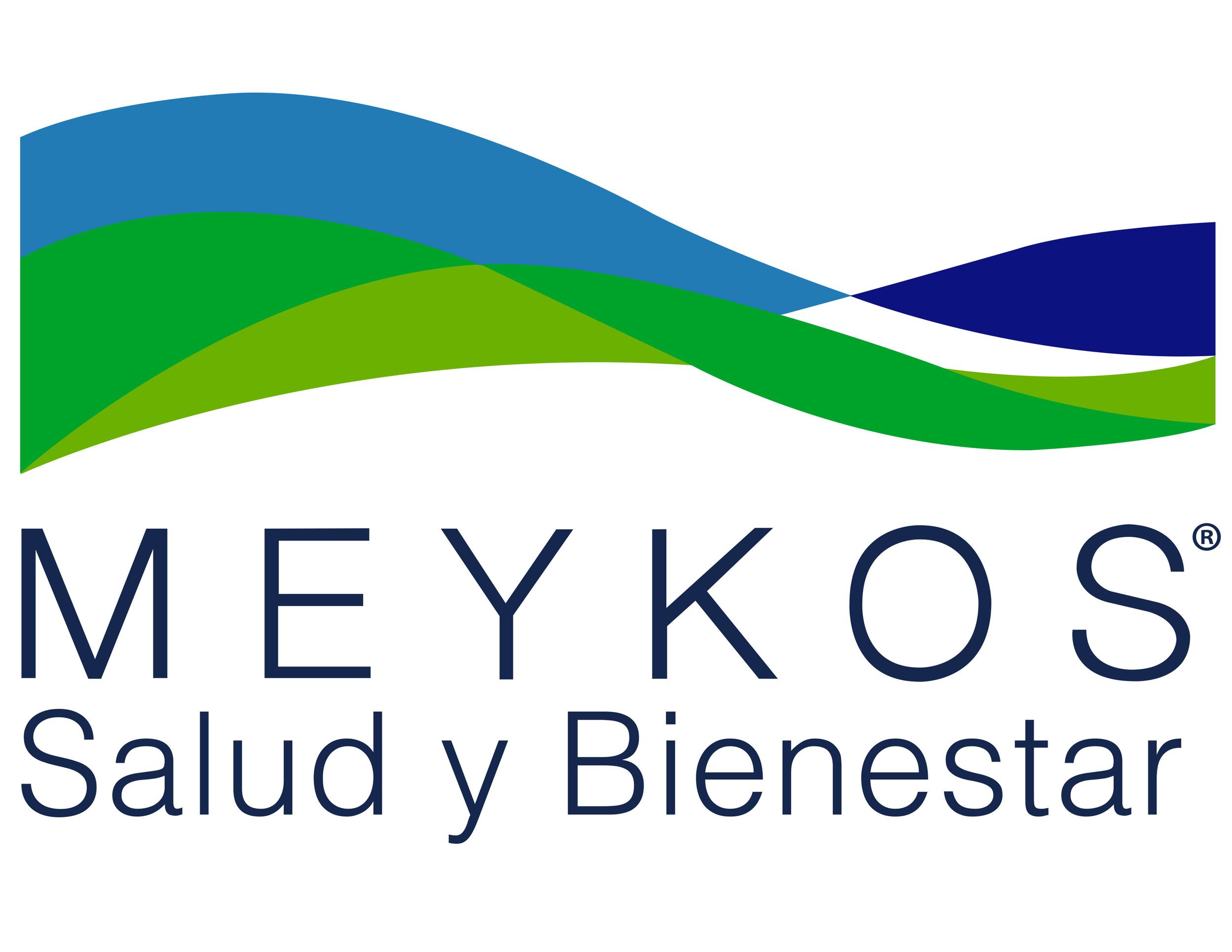 Logo Meykos.jpg
