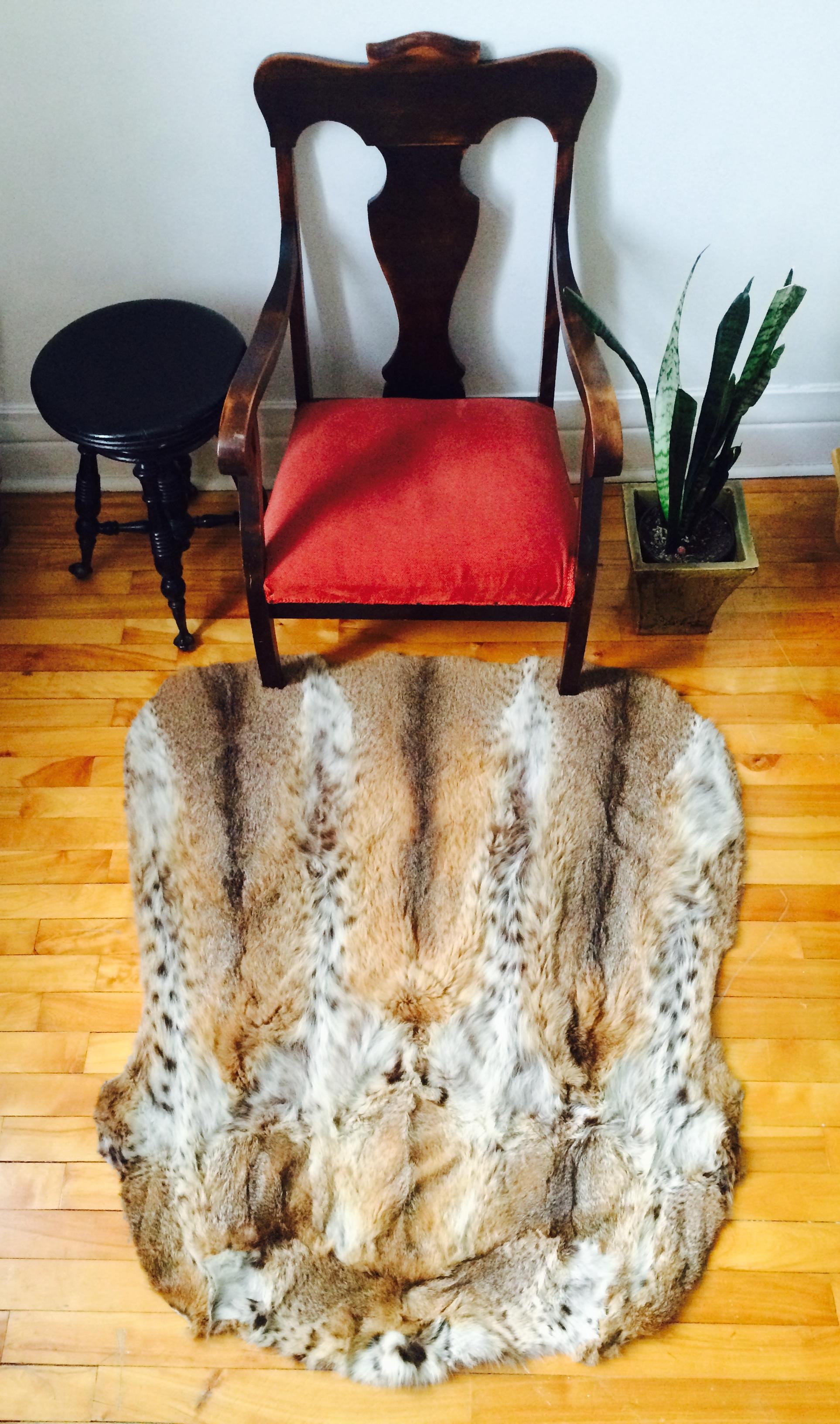 Linx bobcat area rug