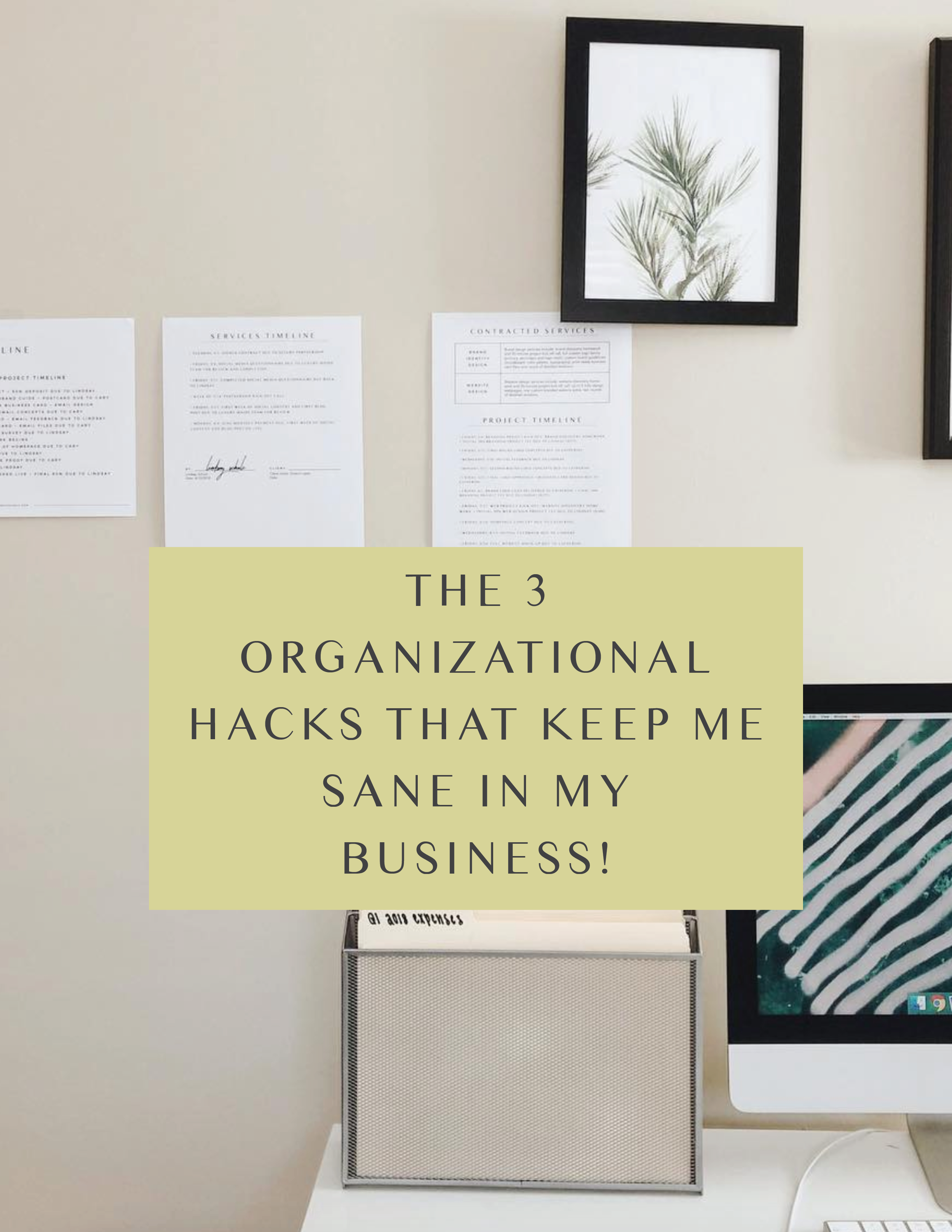 The 3 Organizational Hacks That Keep Me Sane In My Business!