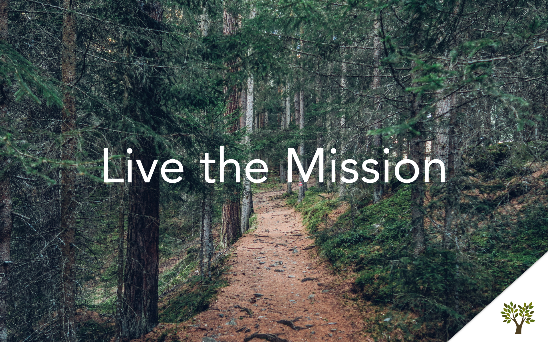Live the Mission  Terry Fant