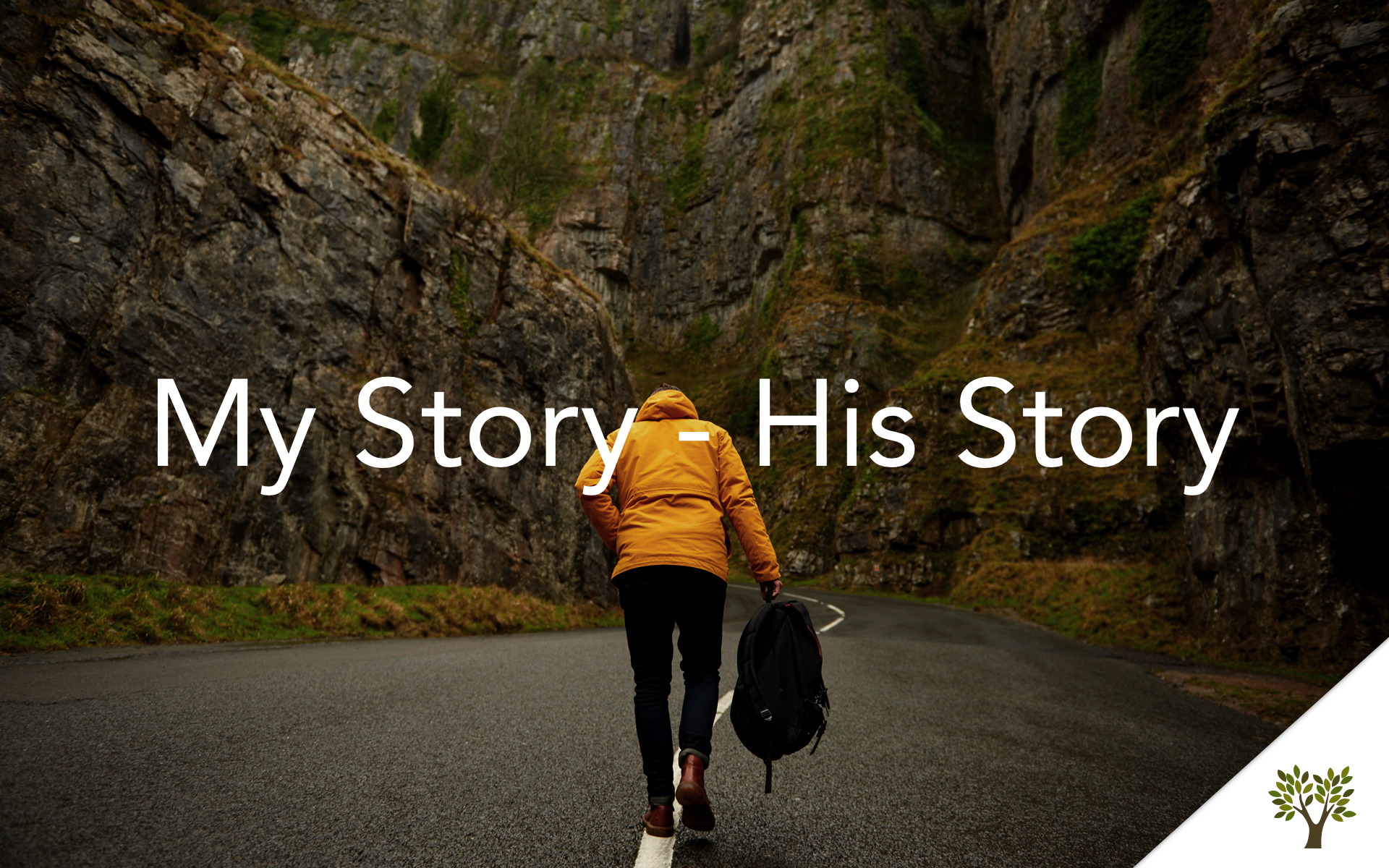 My Story - His Story  Terry Fant