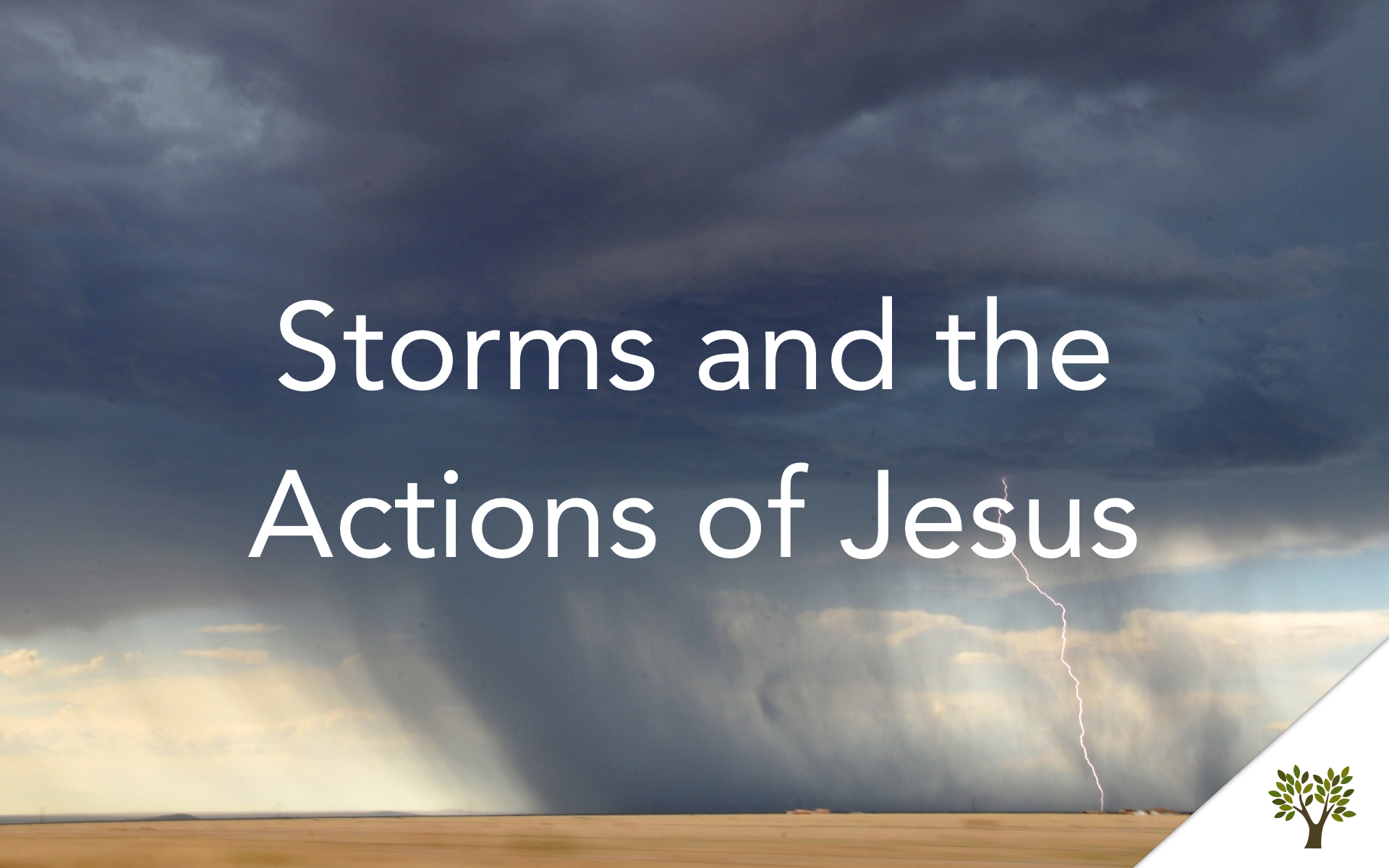 Storms and the Actions of Jesus  Gerald Young