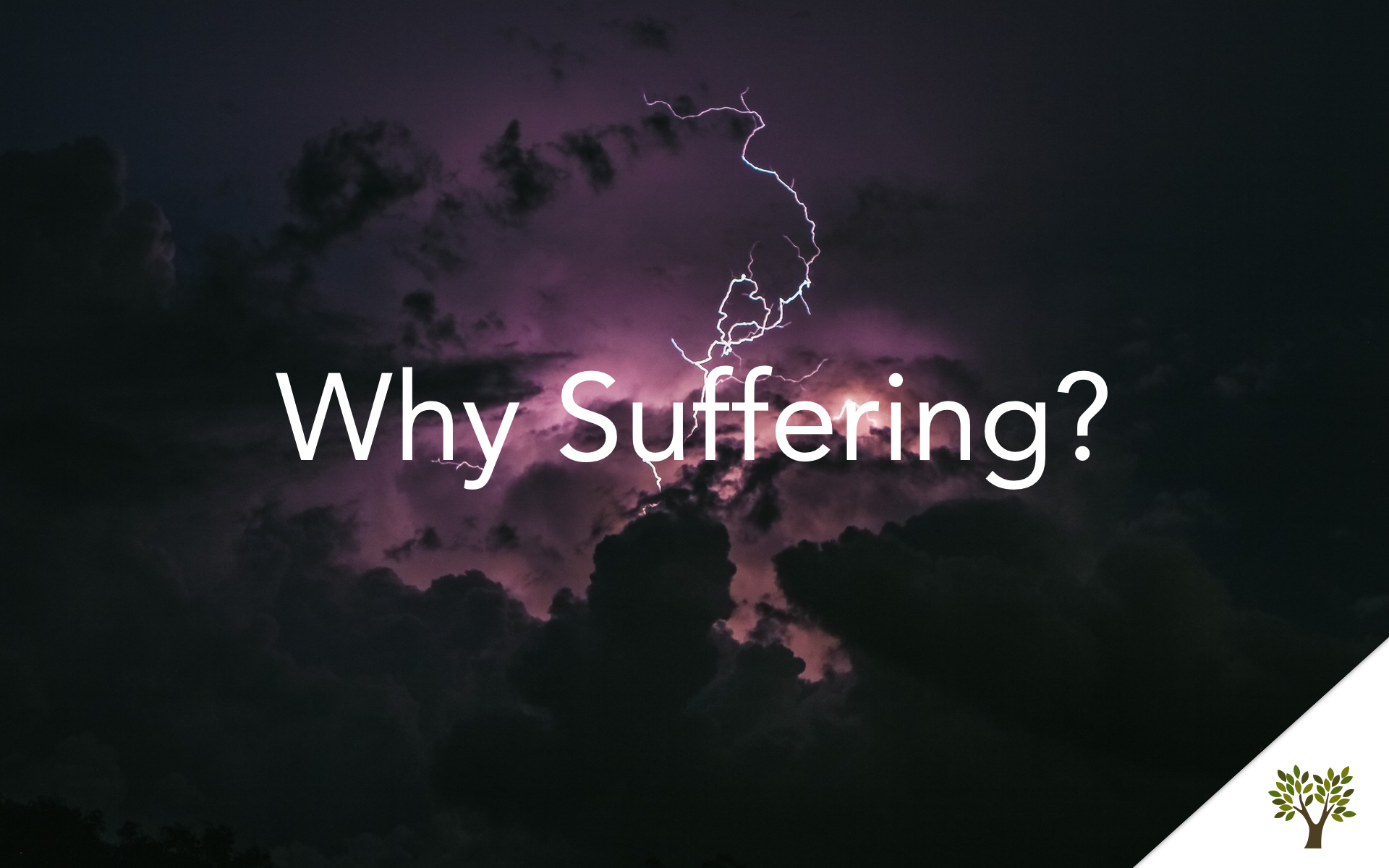Why Suffering?  Terry Fant