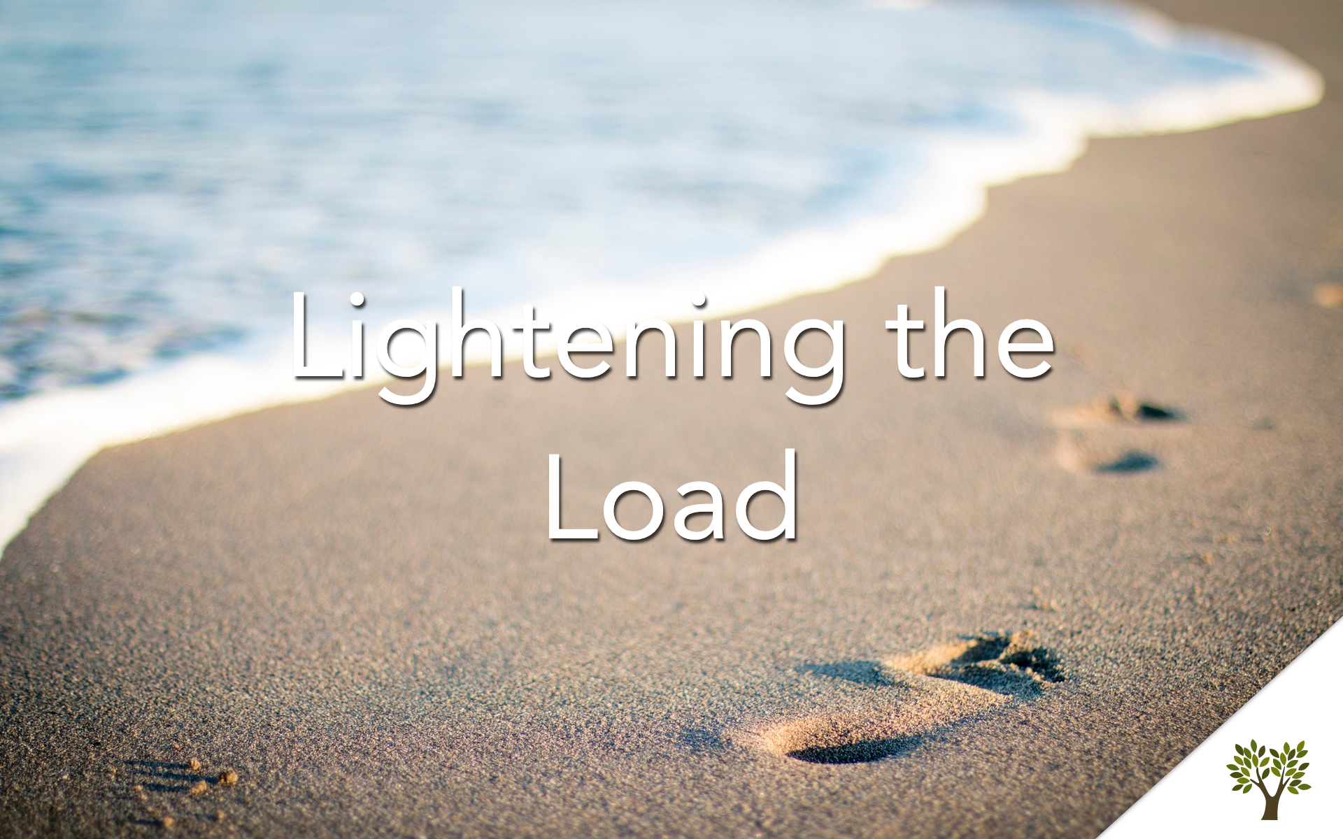 Lightening the Load  Terry Fant