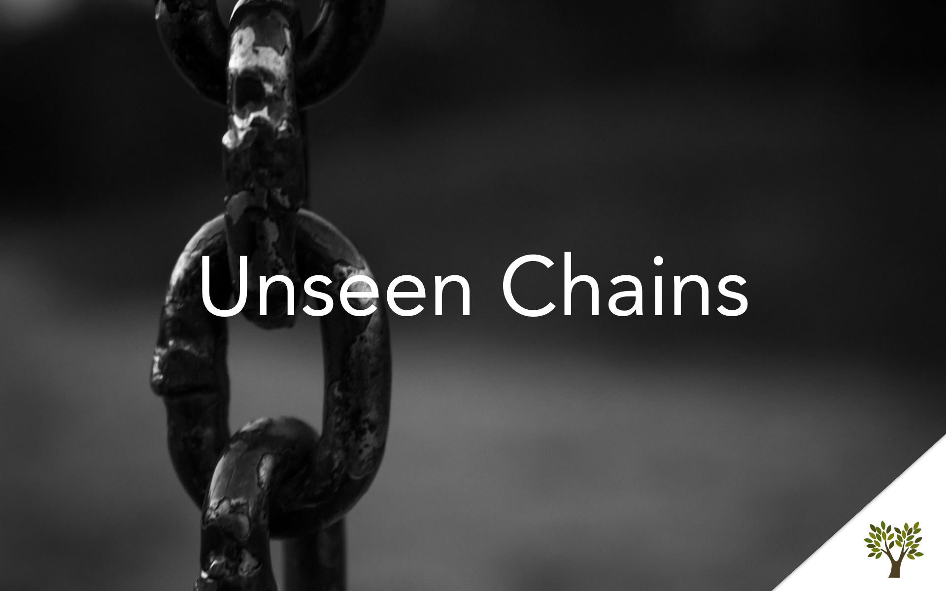 Unseen Chains  Terry Fant