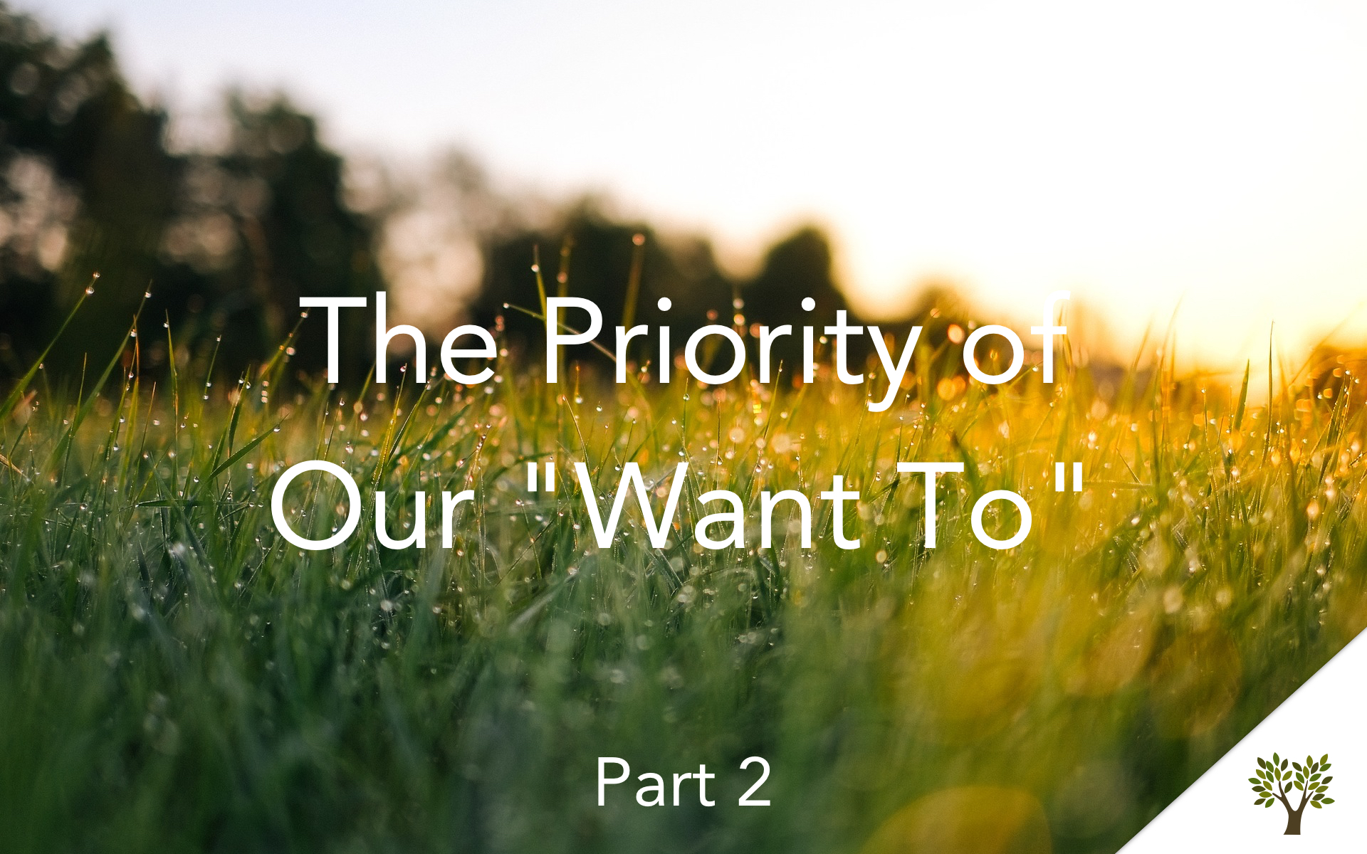 "The Priority of Our ""Want To"" - Part 2  Terry Fant"
