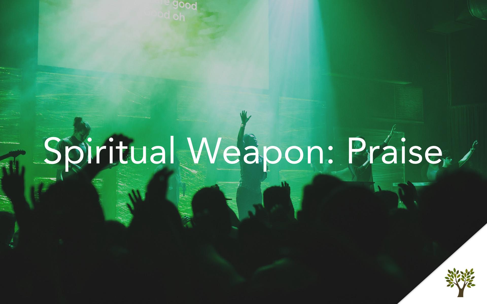 Spiritual Weapon: Praise  Terry Fant