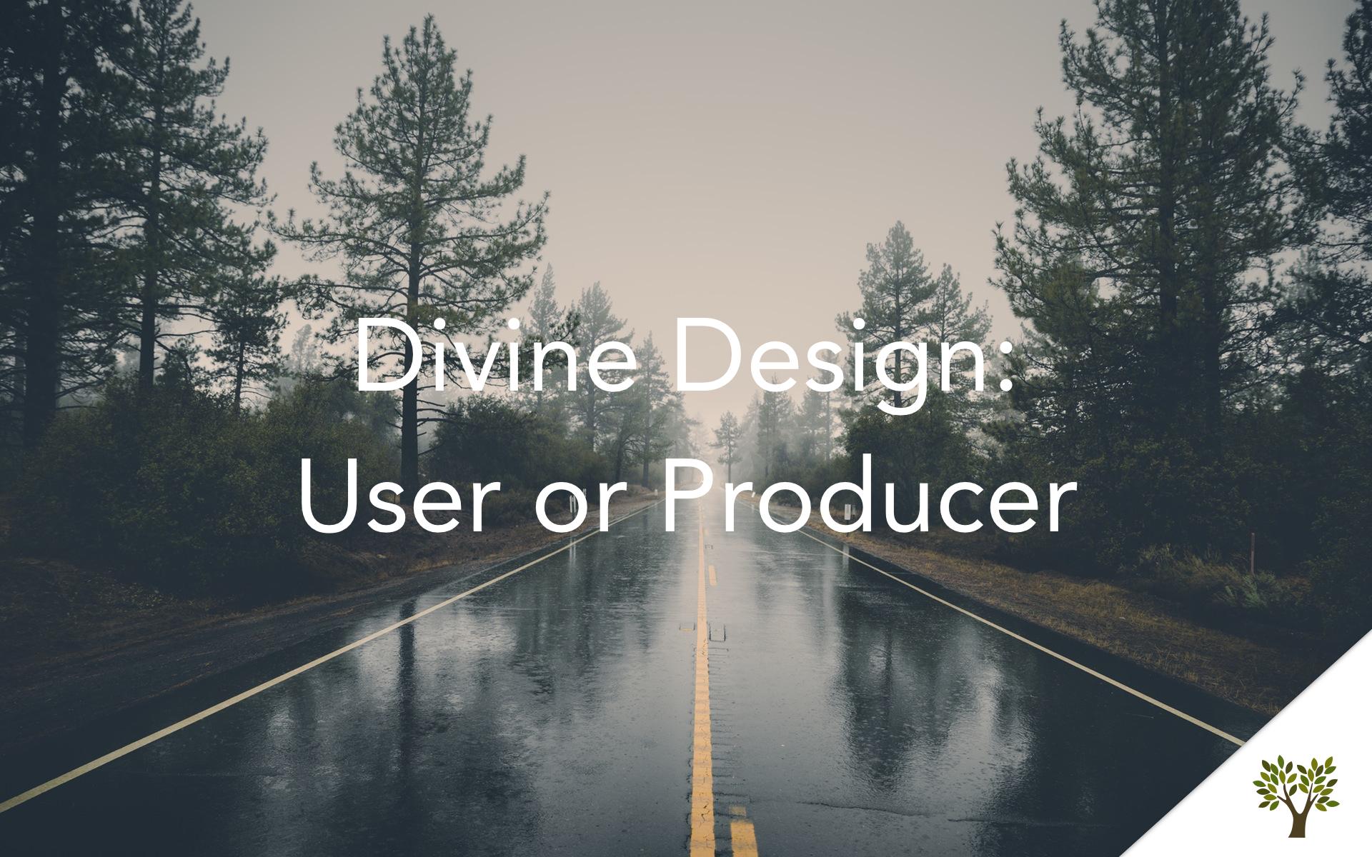 Divine Design: User or Producer  Terry Fant