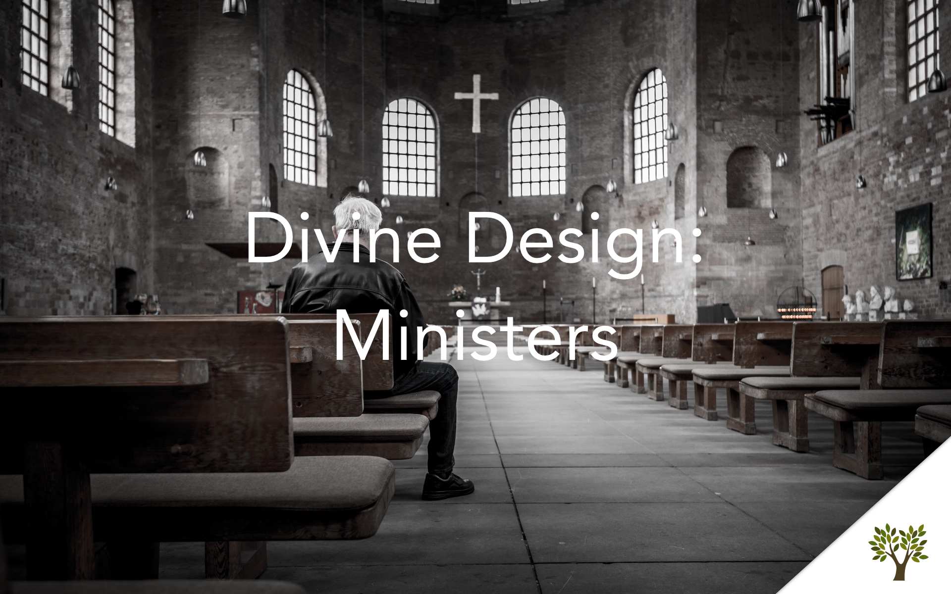 Divine Design: Ministers  Terry Fant