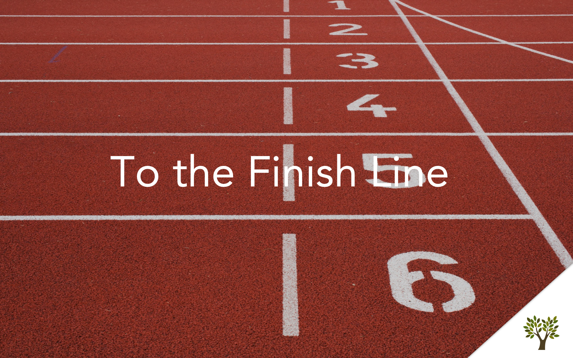 To the Finish Line  Terry Fant