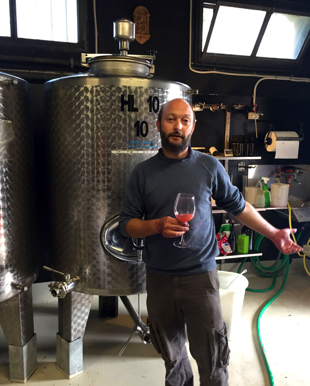 wine-tour-florence-firenze-italy-vino.jpg