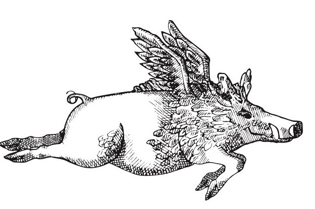 AFK+pig+logo.jpg