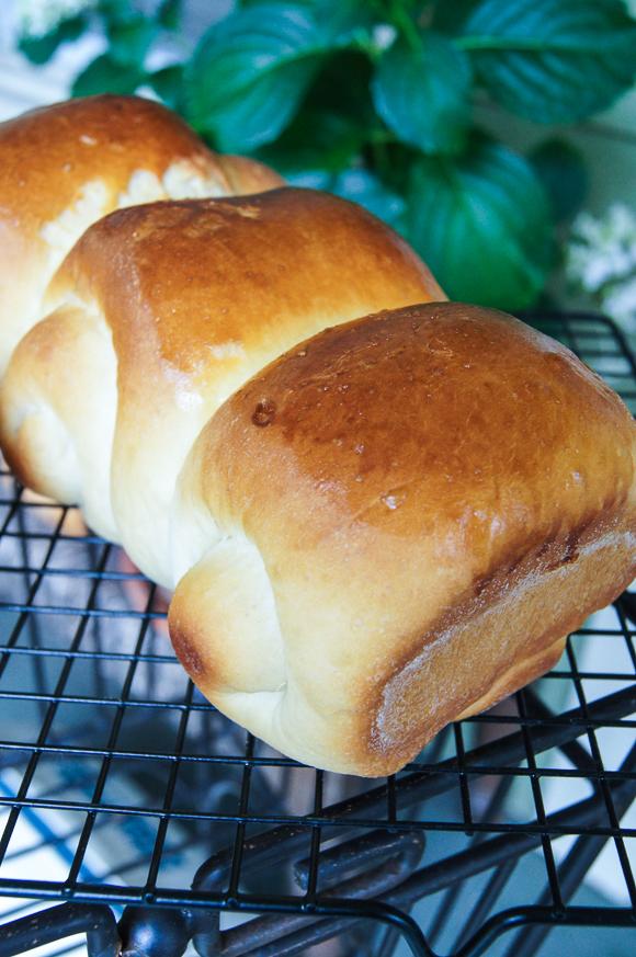 Milk Bread-00273.jpg