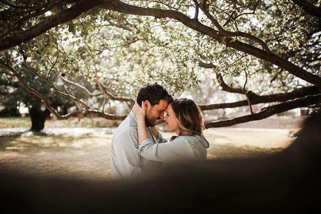 Sweep me under the tree limbs. ⠀⠀⠀⠀⠀⠀⠀⠀⠀ .⠀⠀⠀⠀⠀⠀⠀⠀⠀ .⠀⠀⠀⠀⠀⠀⠀⠀⠀ @oliviahenderlite ⠀⠀⠀⠀⠀⠀⠀⠀⠀ #instylebridal #dallasbride #texasbride #dfwbride #dfwweddings #dfwweddingphotographer #dallasweddings #fortworthbride #fortworthphotographer #fortworthweddings #dearestviewfinder #junebugweddings #greenweddingshoes #lookslikefilm #sonya7riii #northtexasbrides #bridalbeauty #bridesofnorthtx #theknottexas #weddingwirerated #coupleschoice #elopementcollective #7centerpieces #lucydylanweddings #southernbridemagazine #southernbride #texaswedding #canon5dmarkiii