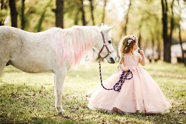 Let them be little. ⠀⠀⠀⠀⠀⠀⠀⠀⠀ Opening a new date for Summer Unicorn Mini's with very limited spaces, who wants in?⠀⠀⠀⠀⠀⠀⠀⠀⠀ .⠀⠀⠀⠀⠀⠀⠀⠀⠀ . ⠀⠀⠀⠀⠀⠀⠀⠀⠀ #dfwkids #instadfw #dfwchildphotographer #dallaskids #fortworthkids#childrenphotographer #northtexasphotographer #dentonphotographer #dallaschildren  #dentoning #weddingwirerated #familylifestyle #dallasstudios #photographystudio #dallaschildrenportraits #dentonsmallbusiness #kidsofinstagram #lifestylephotography #childrenofinstagram #familyphotographer #dentonfamilyphotographer #kidphotoshoot #babylove #babyfever #tinytoes #texasphotographer #northtexaskids #northtexaslittles #littleloves #babysnuggles