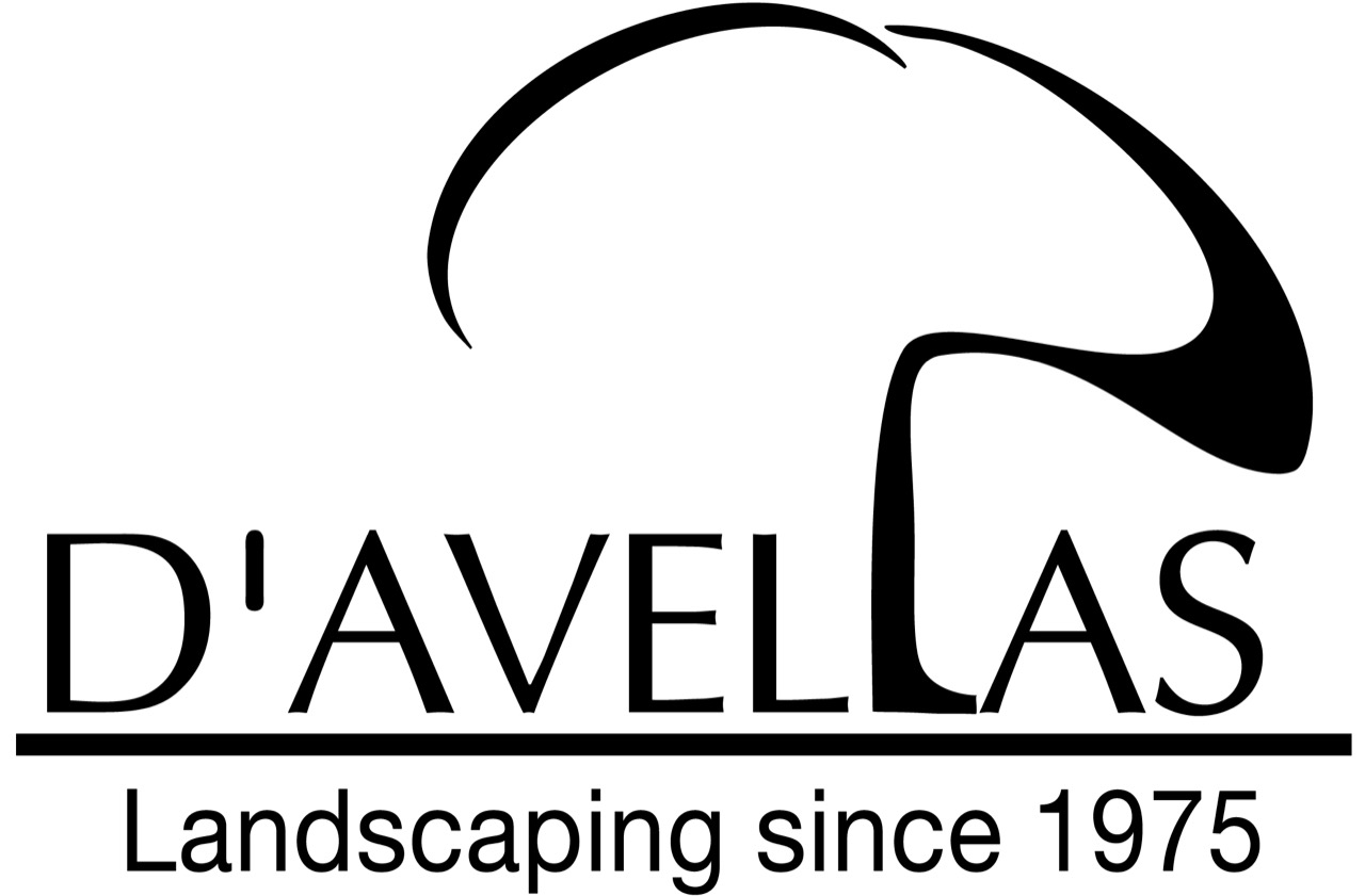 D'Avella Landscaping LOGO.jpeg