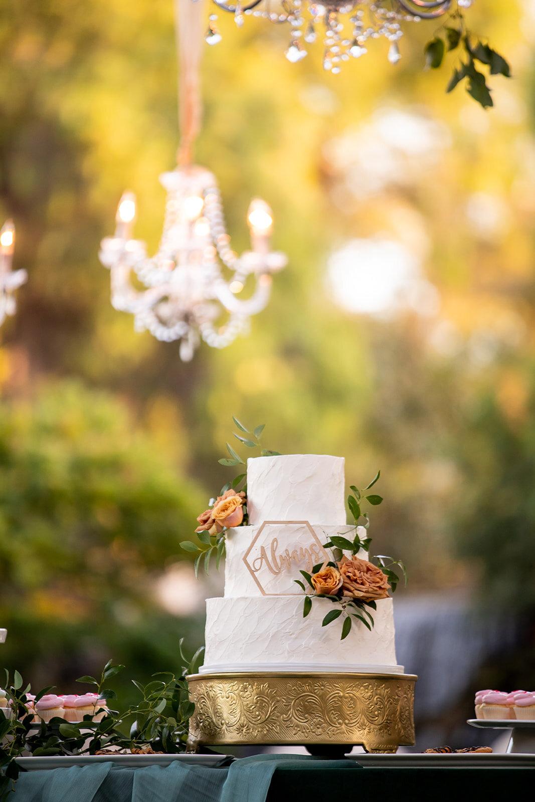 Stefdarrel-cake.jpg