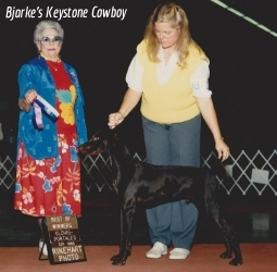 Cowboy1986.jpg