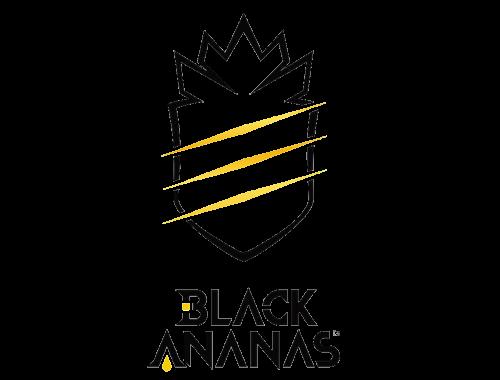 Black_Ananaslogo_2017.png