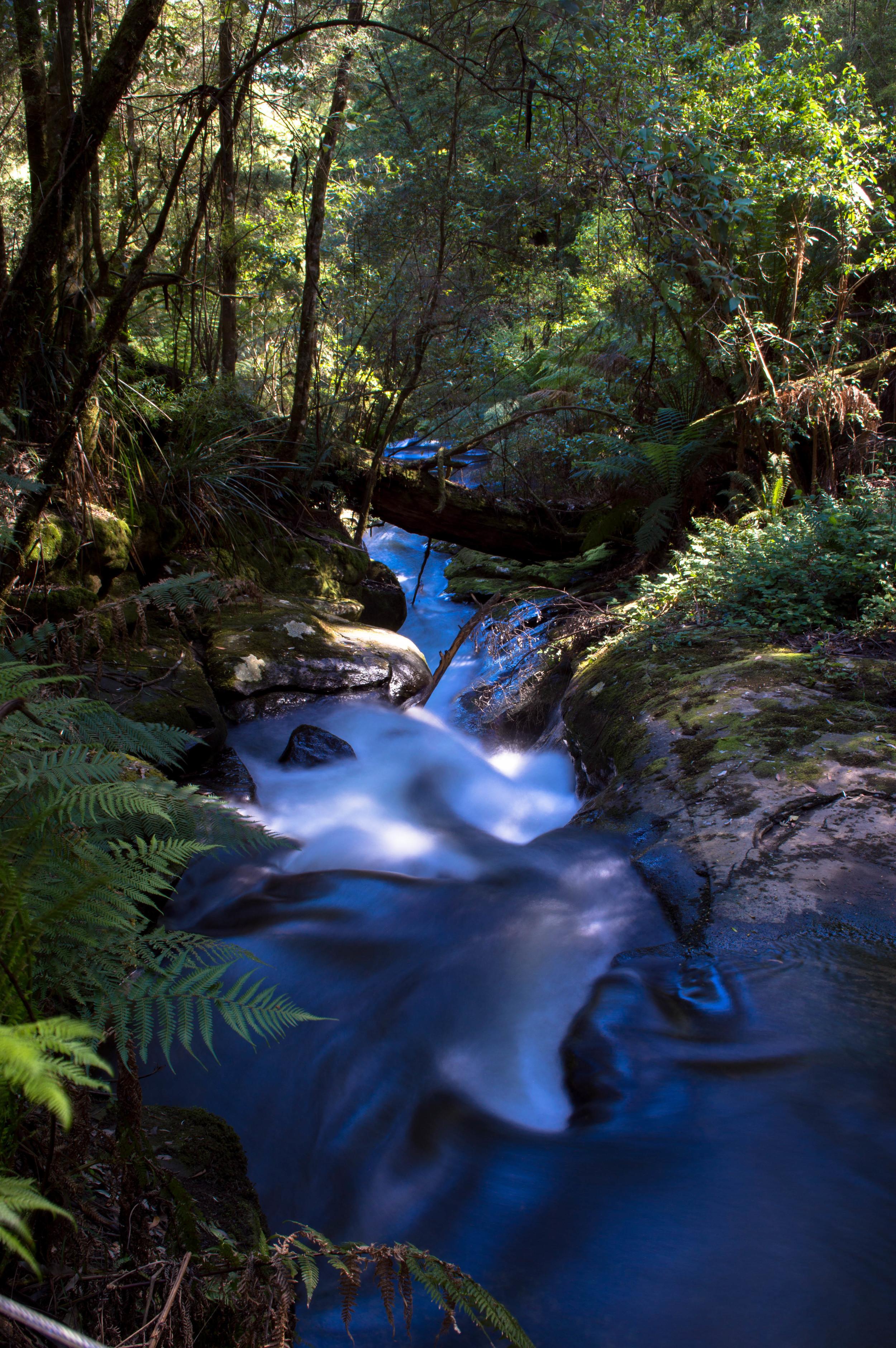 Australia Falls3.jpg