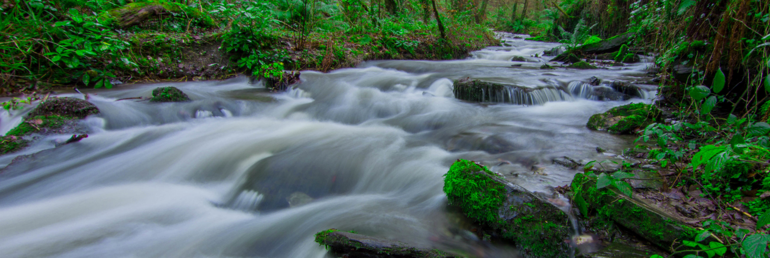 Cornwall Green Stream.jpg