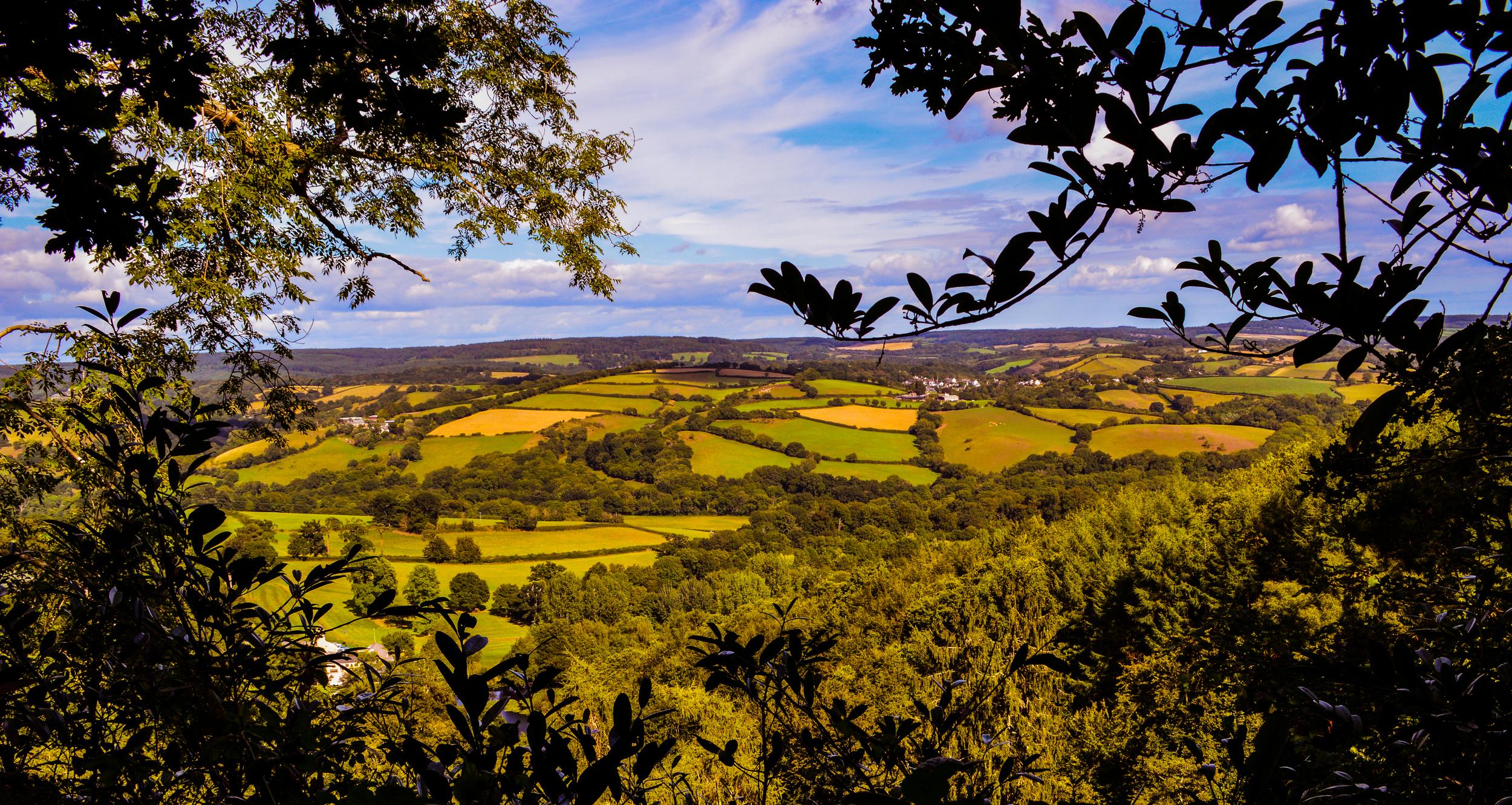 Cornwall Views.jpg