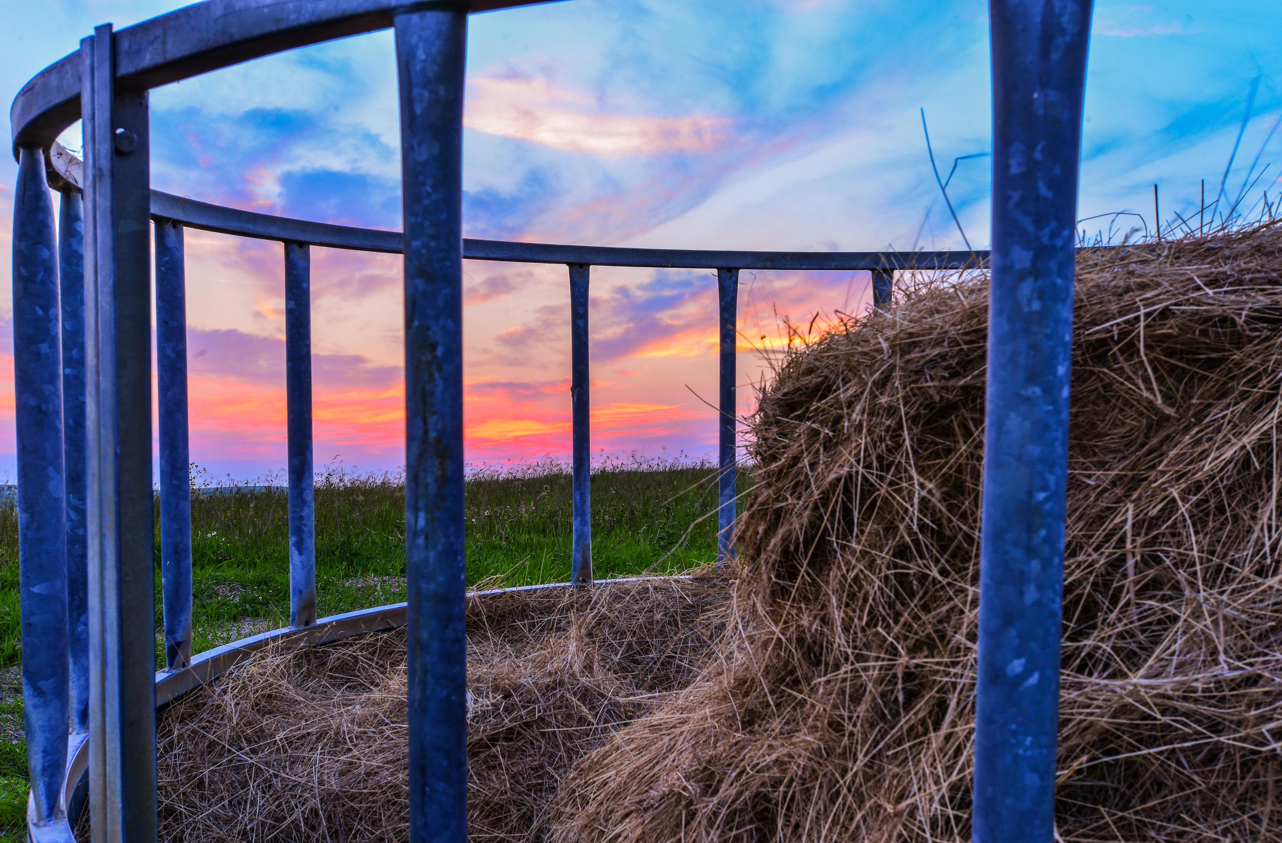 Sussex Sunset 3.jpg