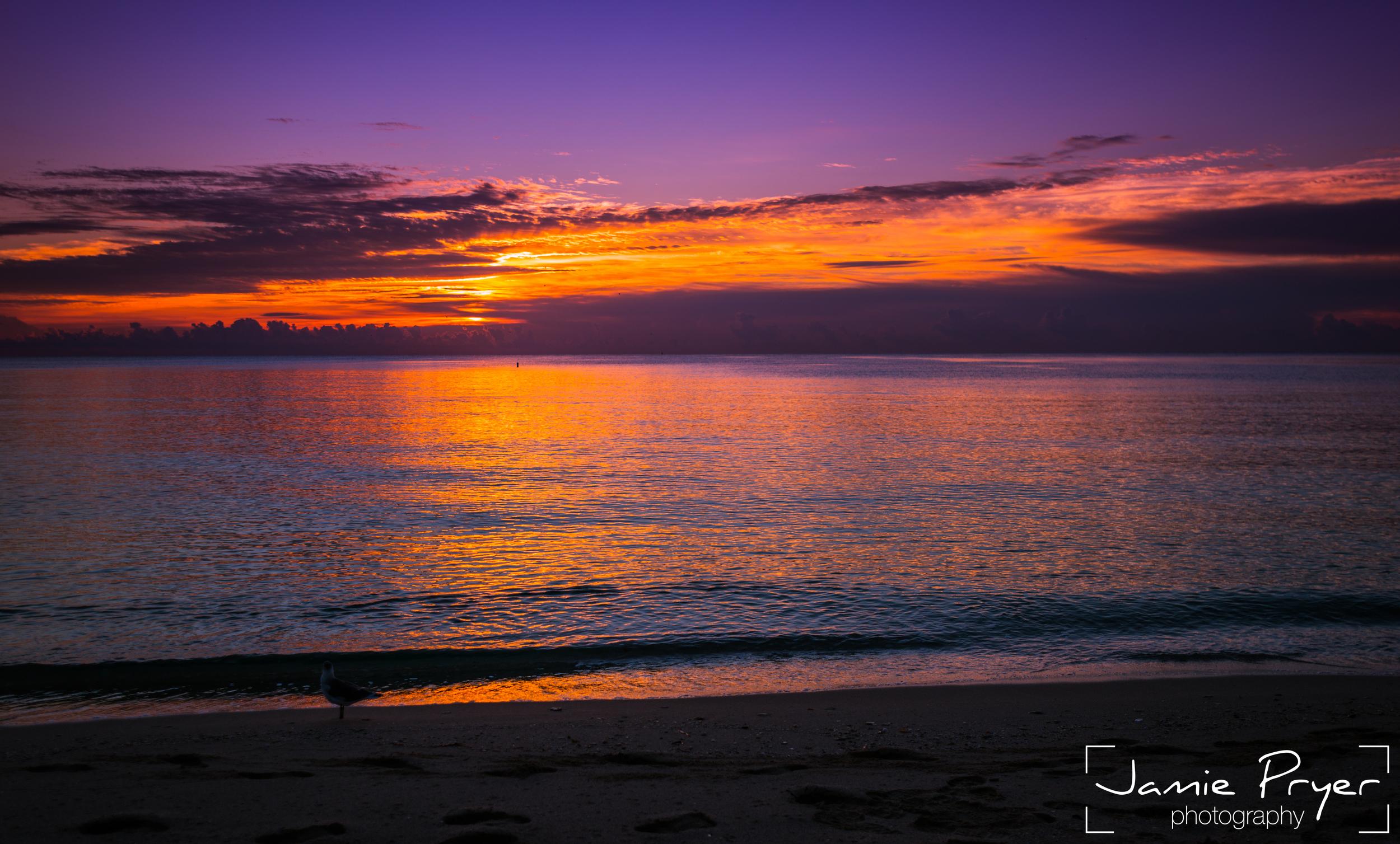 Miami Sunrise2-2.jpg