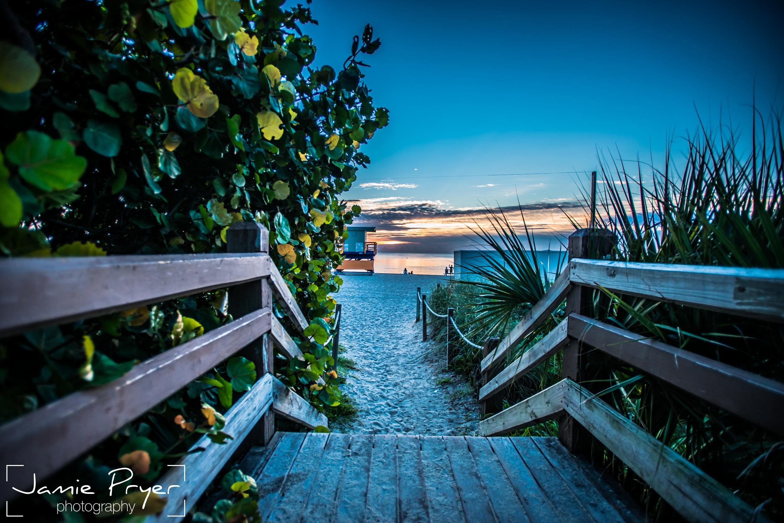 Miami Path.jpg