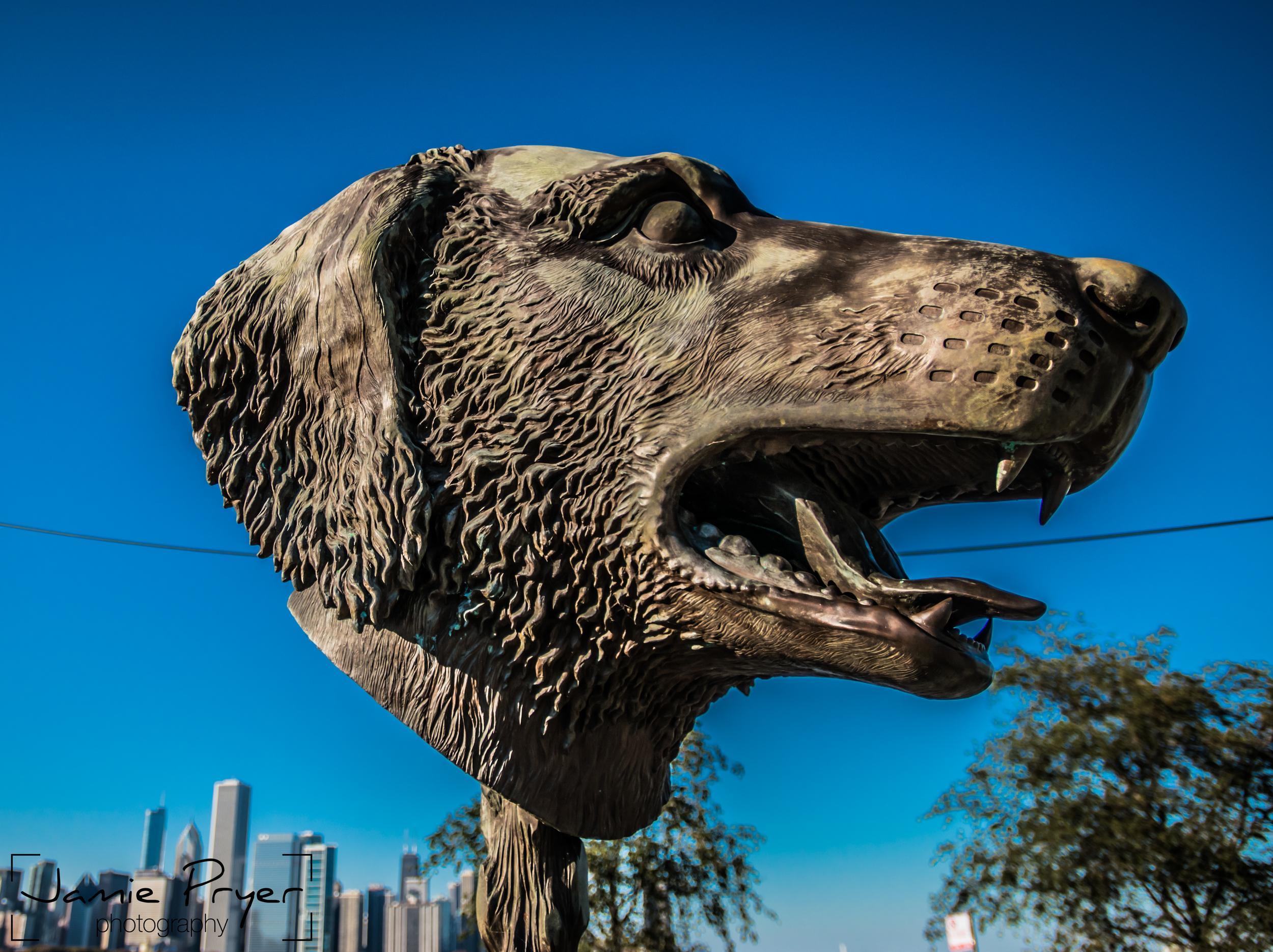Chicago Dog.jpg
