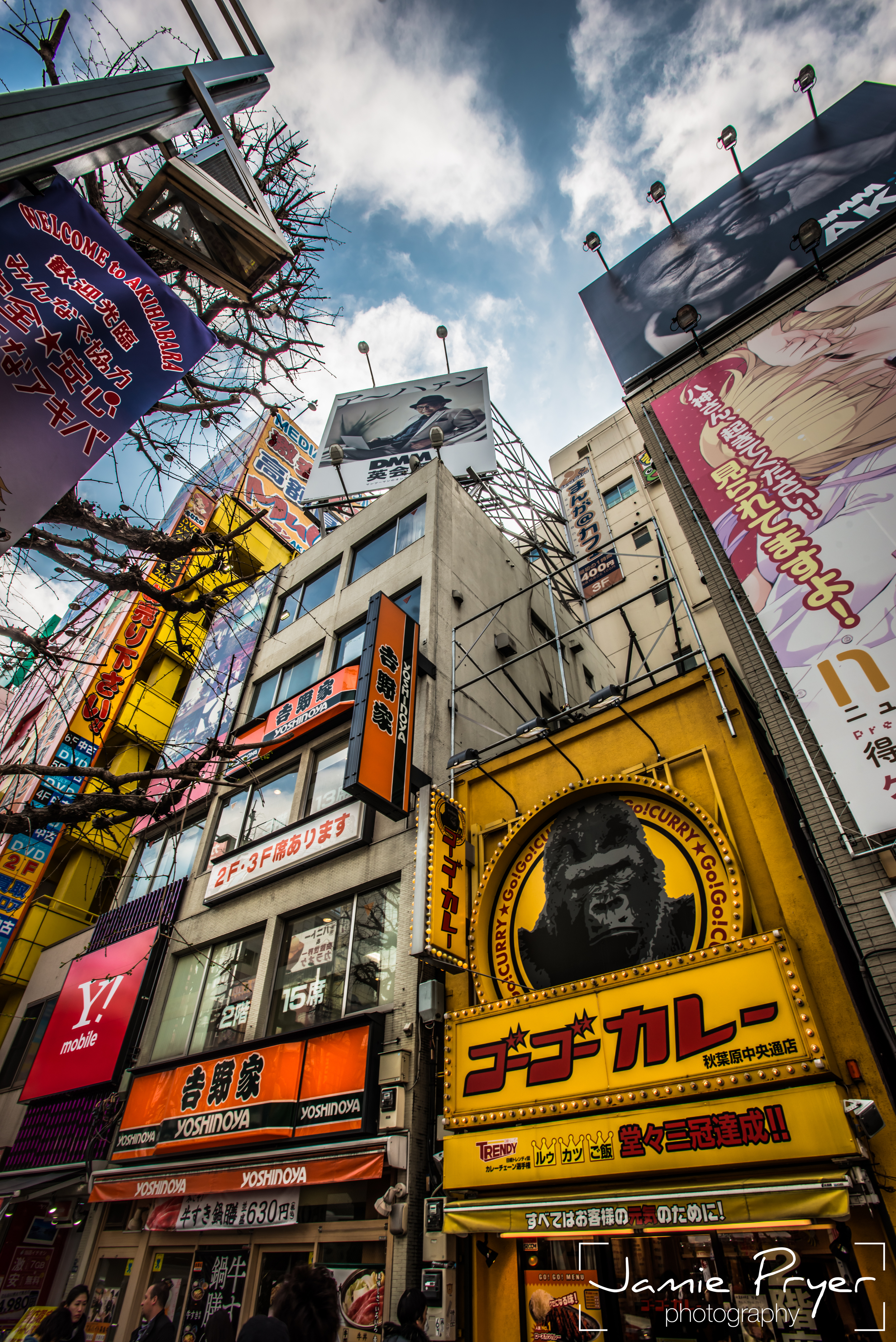 Downtown Tokyo-2.jpg