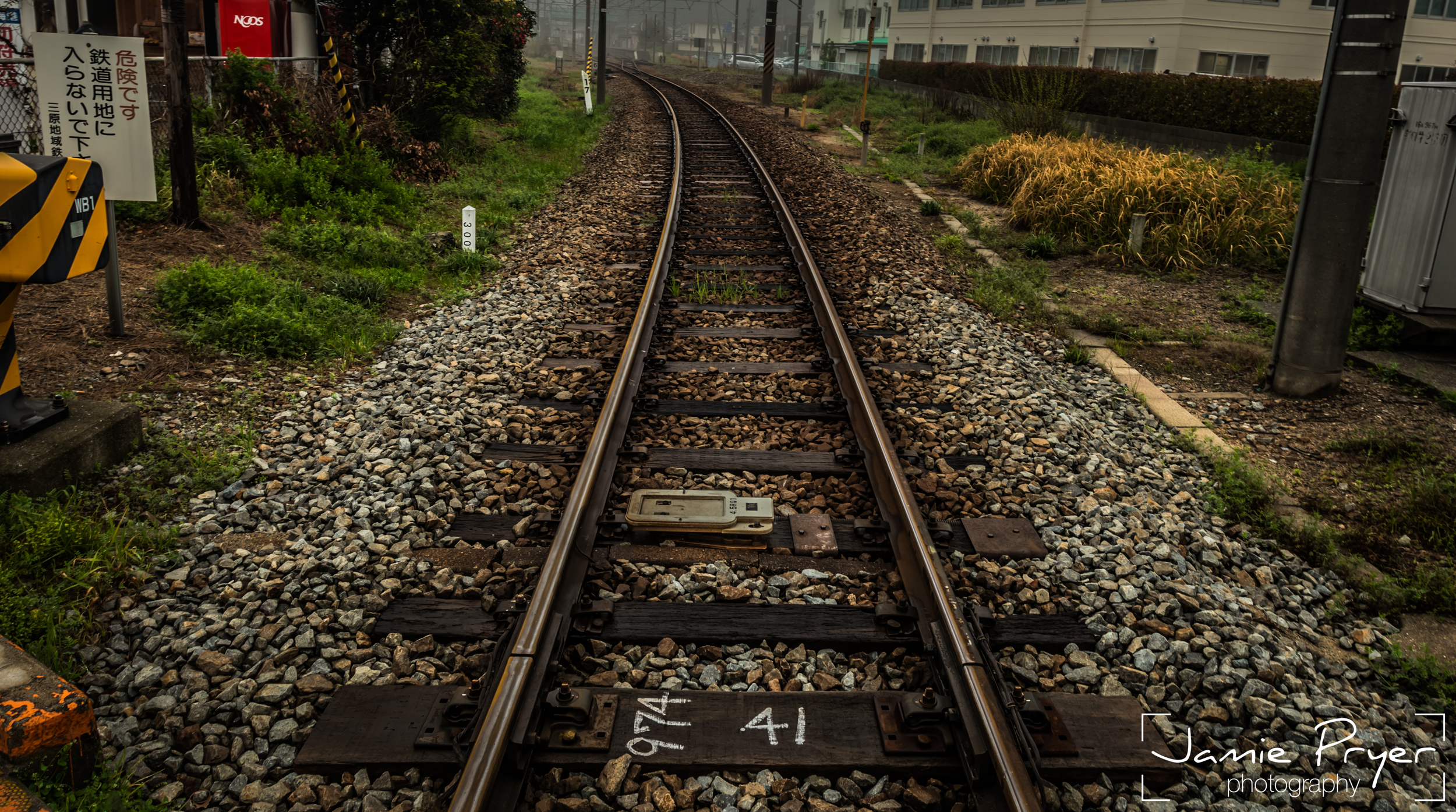 The Lines-2.jpg