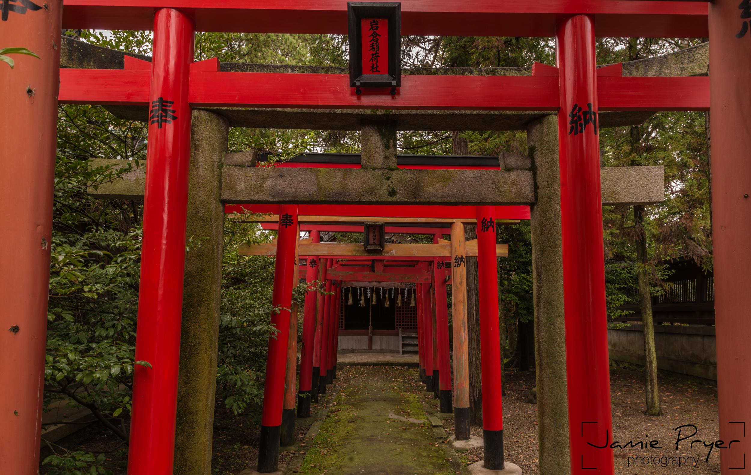 Red Pillars-2.jpg